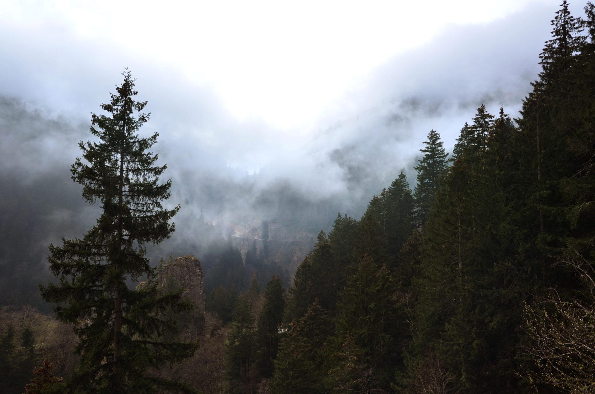 Kloster-Sumela-Nebel