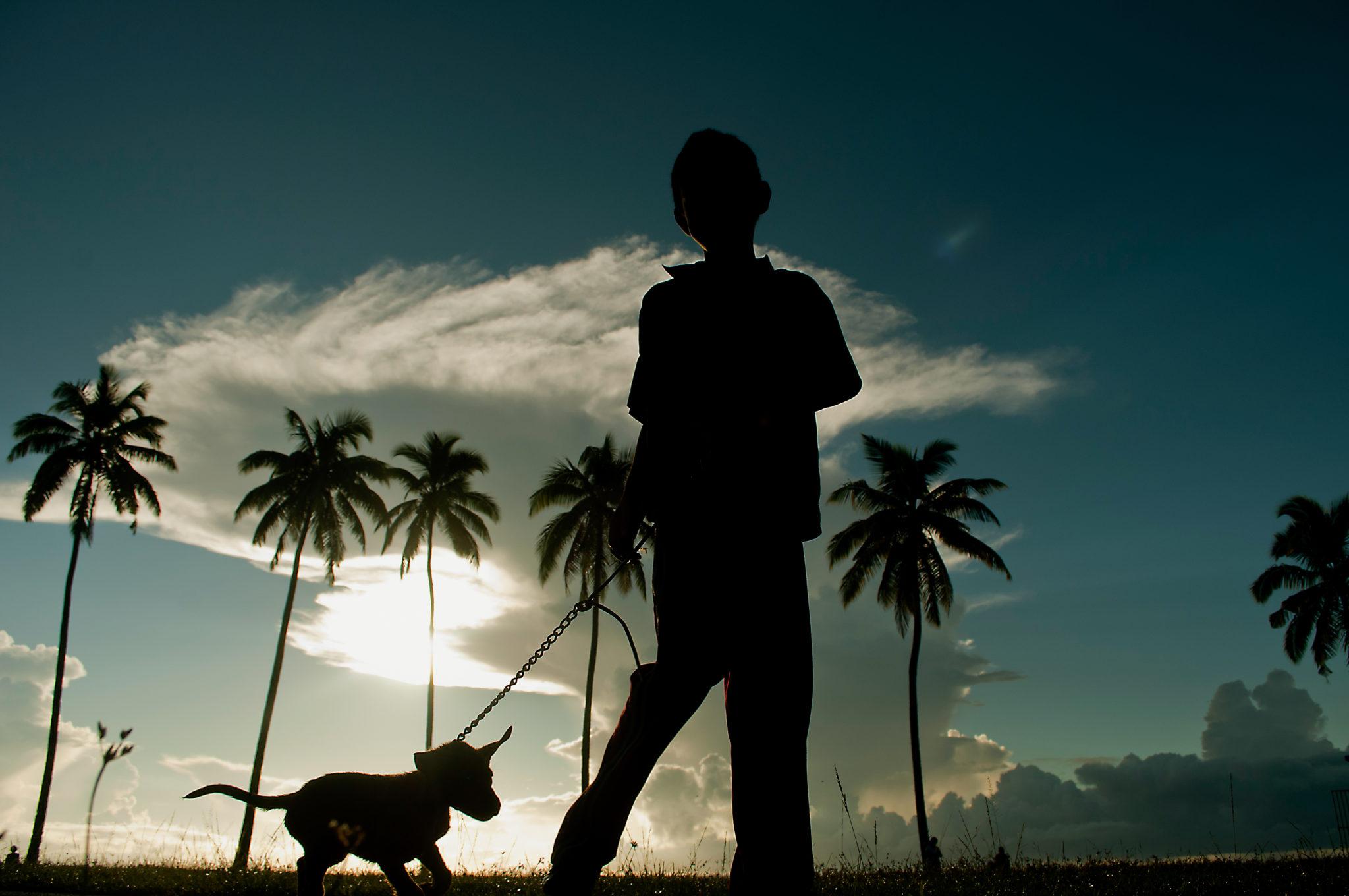 Ein Junge mit einem Hund auf Fidschi