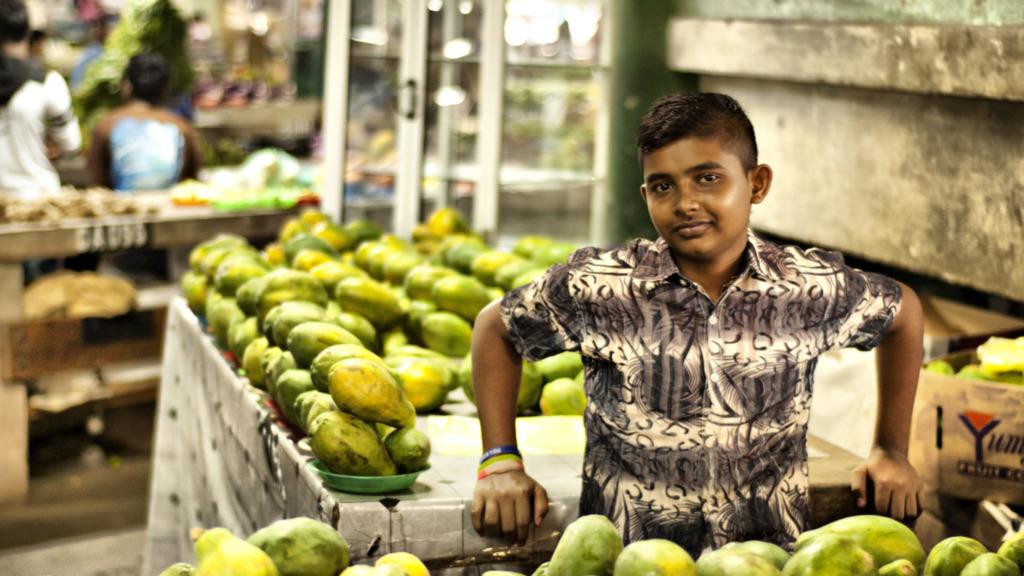 Fidschi-Reisetipps-Papayas