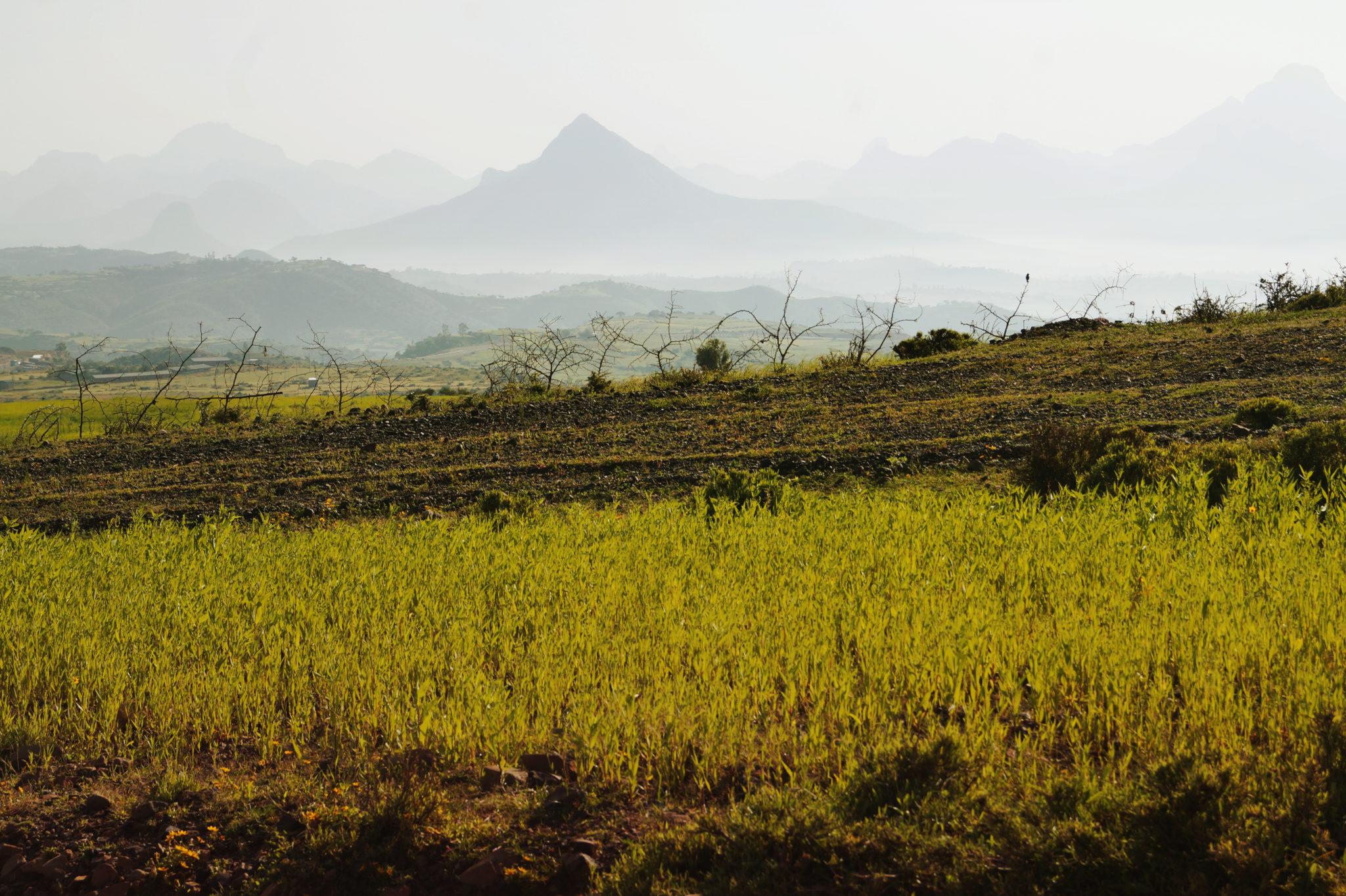 Äthiopien Tipps zu Fortbewegungsmitteln