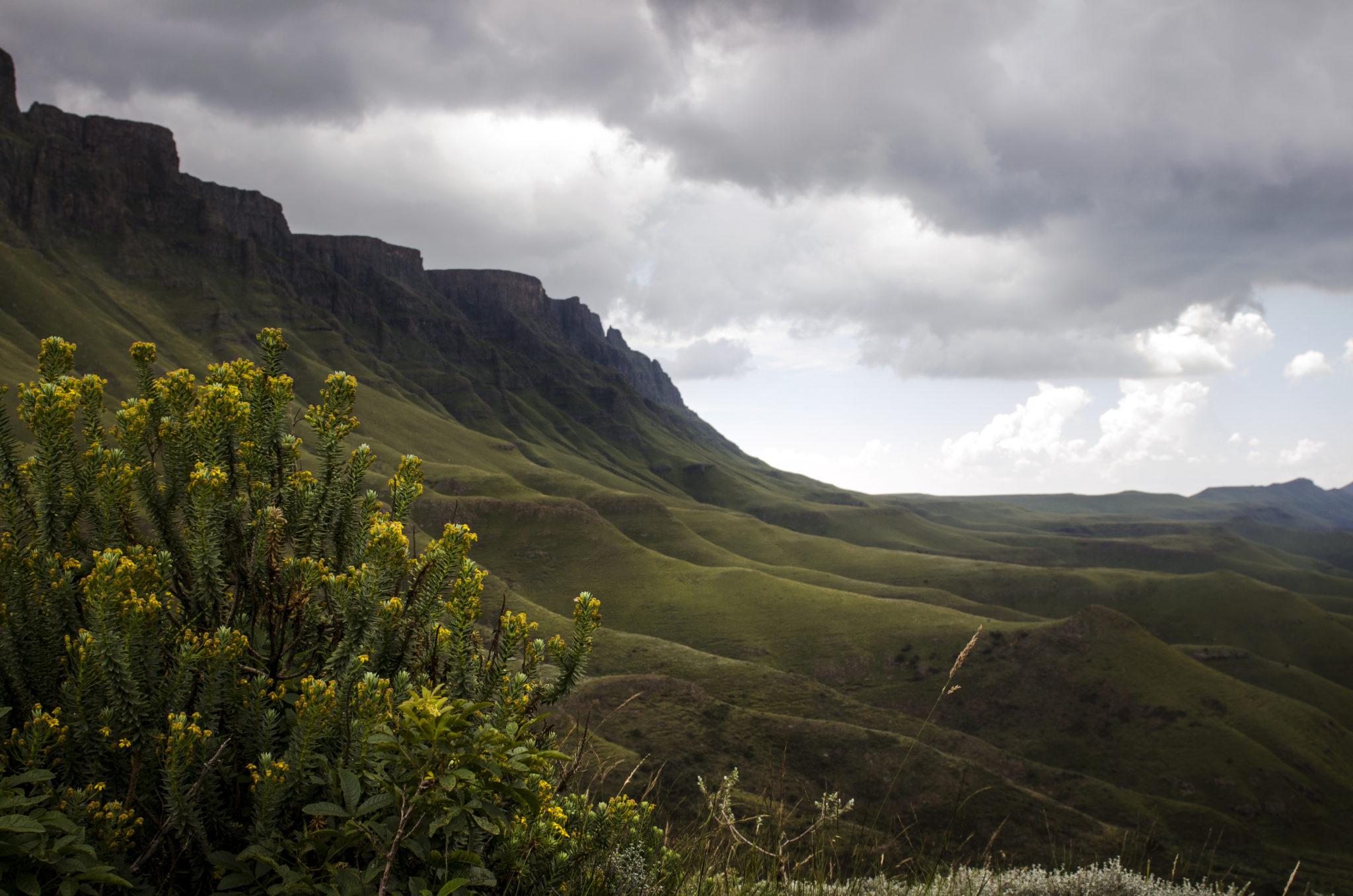 Die Landschaft am Sani Pass in Lesotho und den Drakensbergen in Südafrika