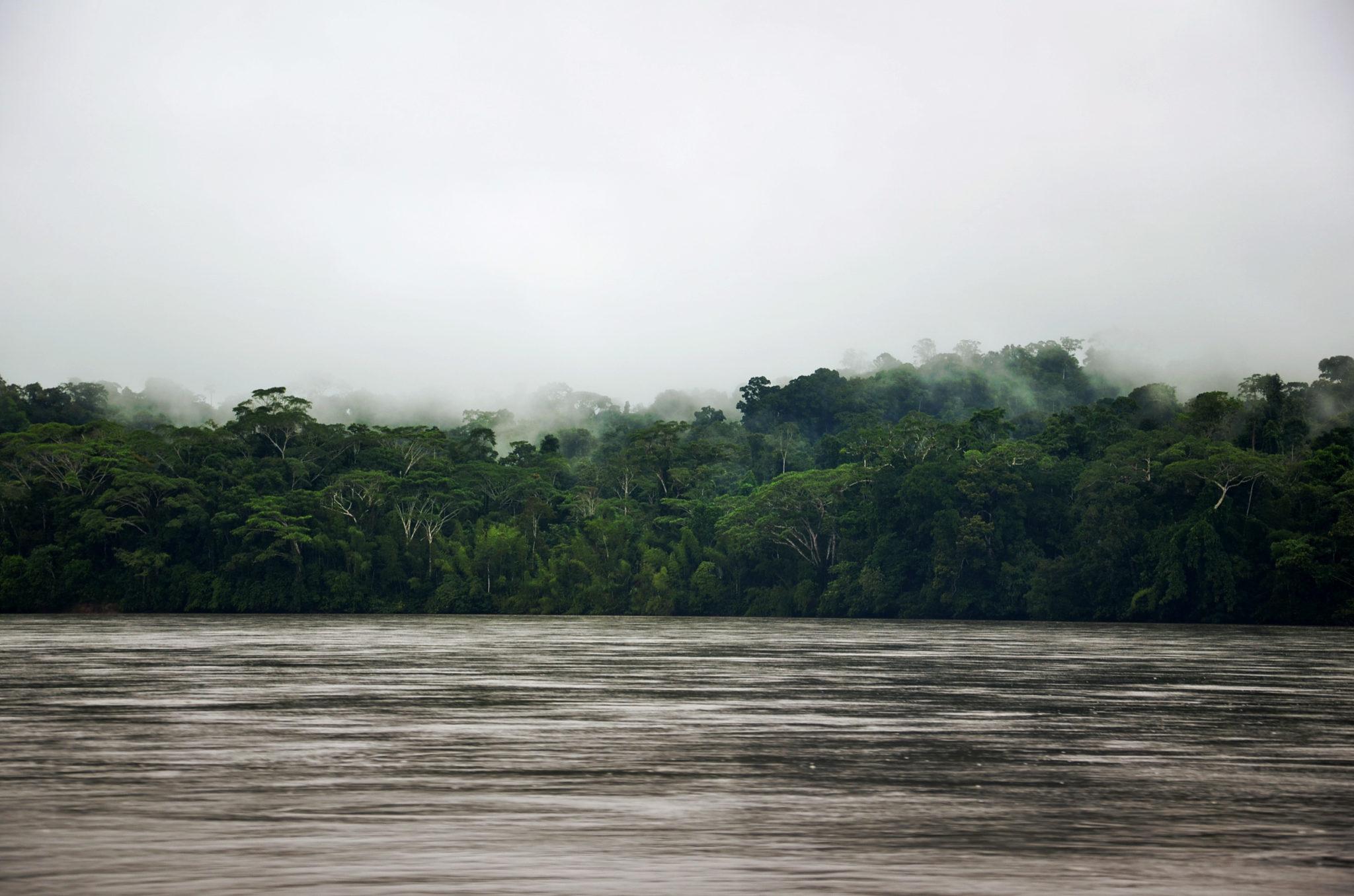 Sehenswuerdigkeiten-Ecuador-Napo-Fluss-Yasuni-Nationalpark