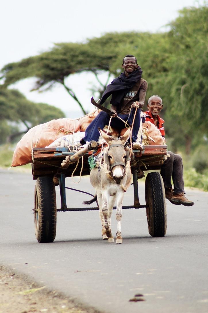 Suedaethiopien-Menschenzoo-Kutsche