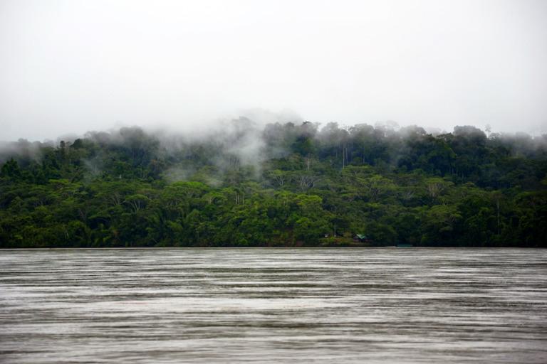 Ecuador: Illegal im Dschungel