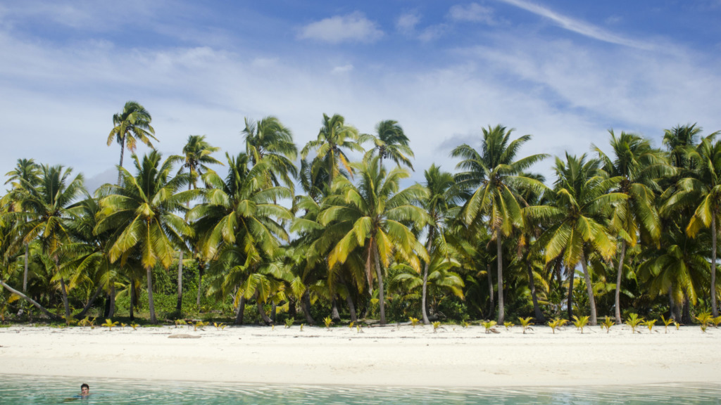 Aitutaki-Cook-Islands-Palmen-Slider