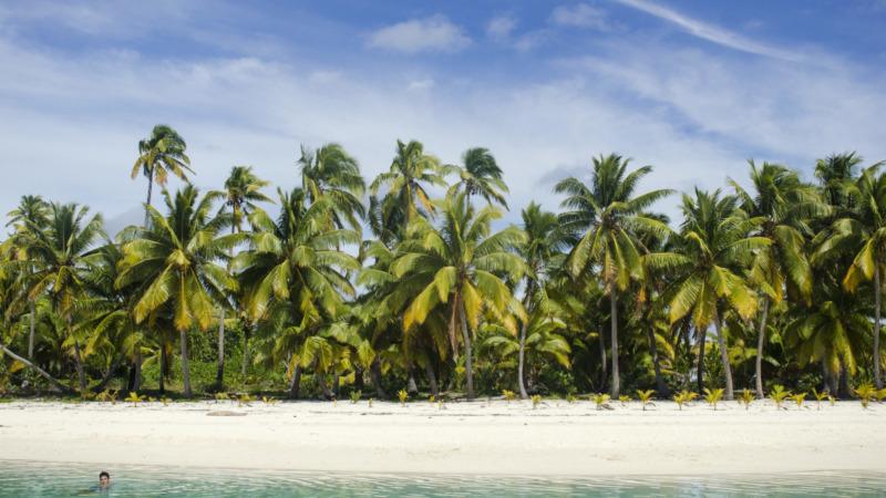 Aitutaki-Cook-Islands-Palmen-Slider