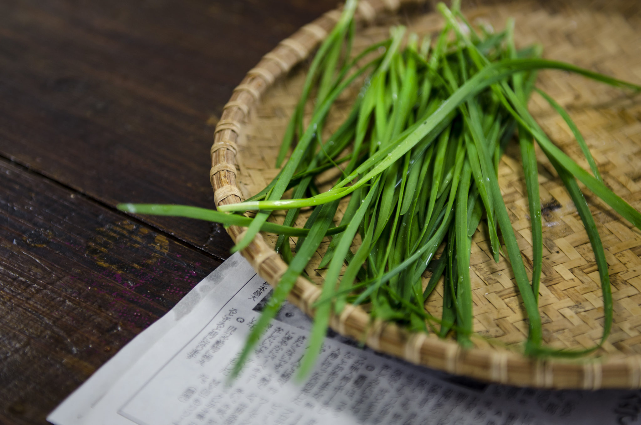 Ishigaki-Japanisch-Kochen-Schnittlauch