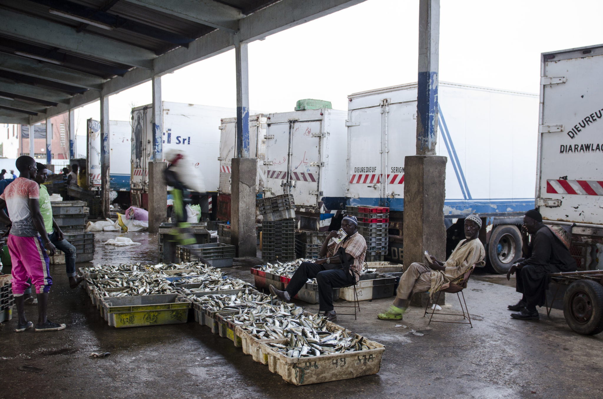 Fischmarkt-Mbour-LKW