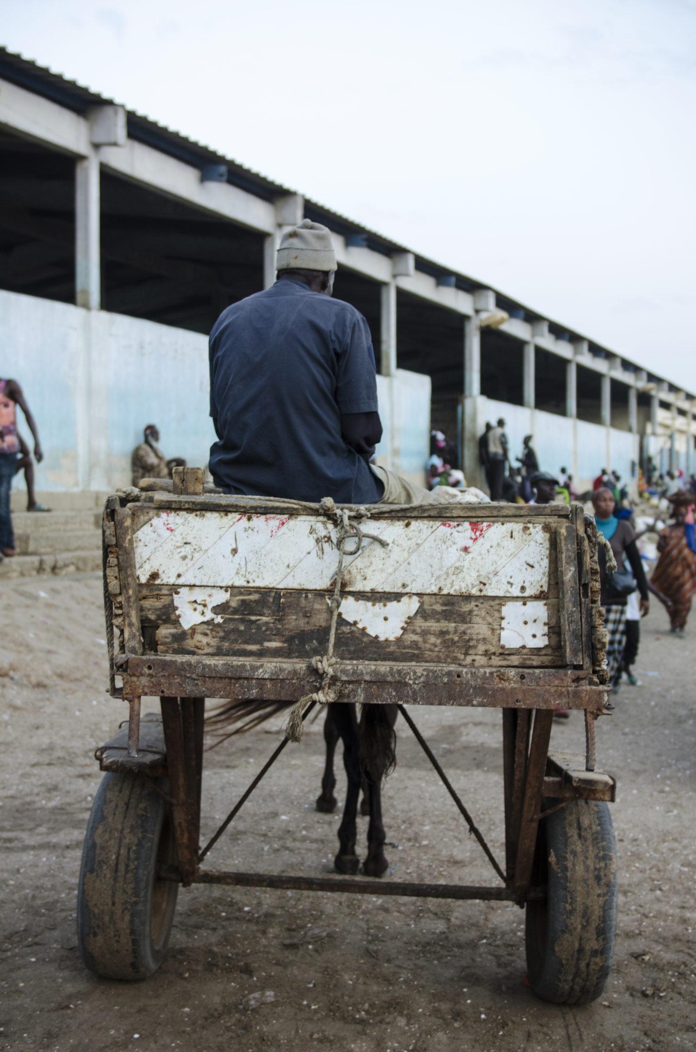 Fischmarkt-Mbour-Pferdekutsche