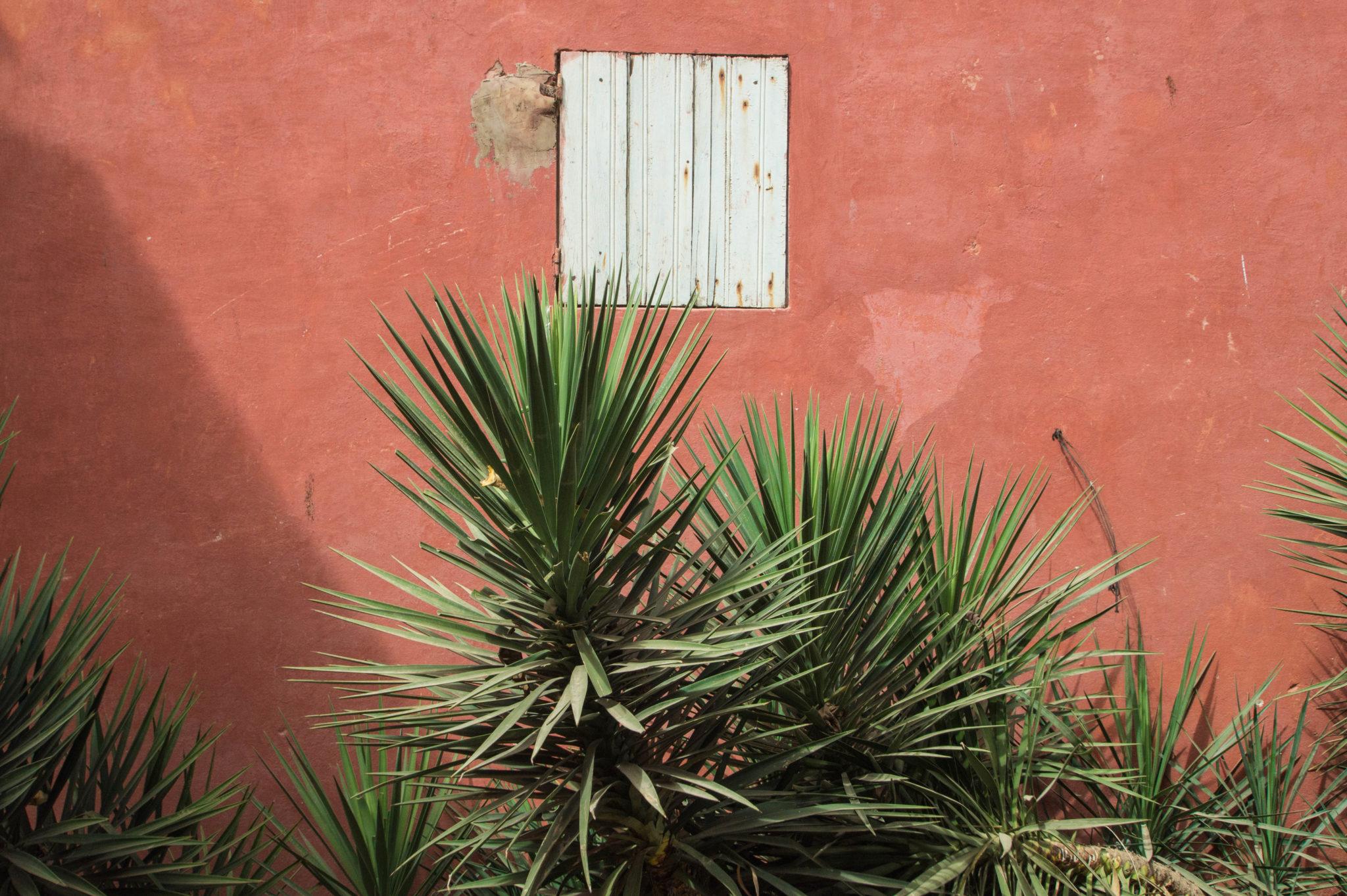 Highlight von Senegal Reisen sind die Hausfassaden auf Ile de Gorée