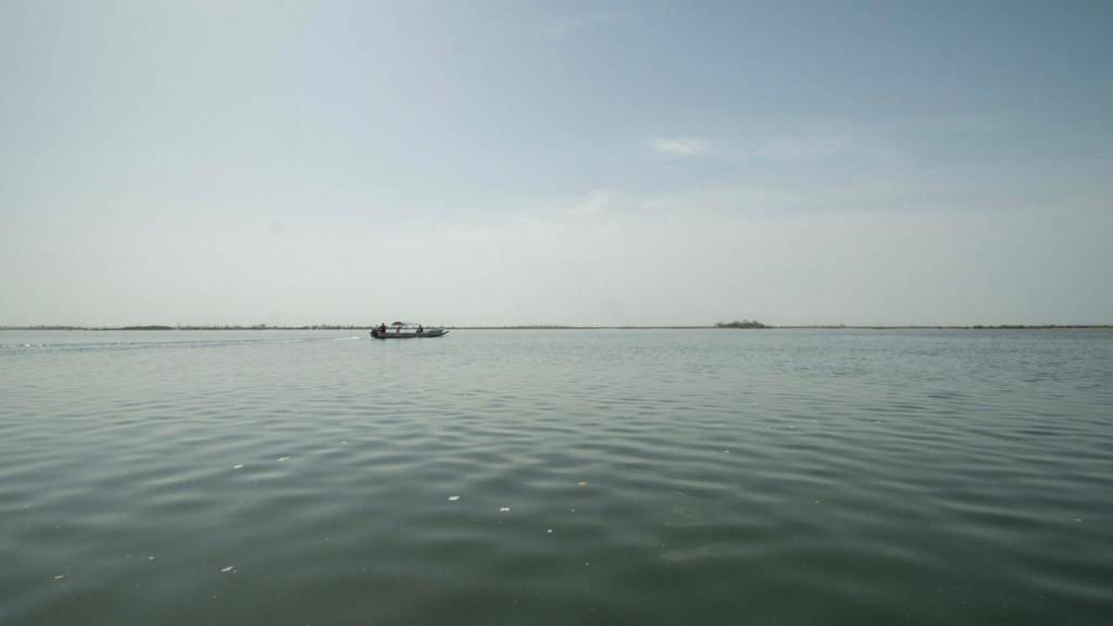 Die Ruhe im Delta: Das Sine Saloum Delta im Senegal