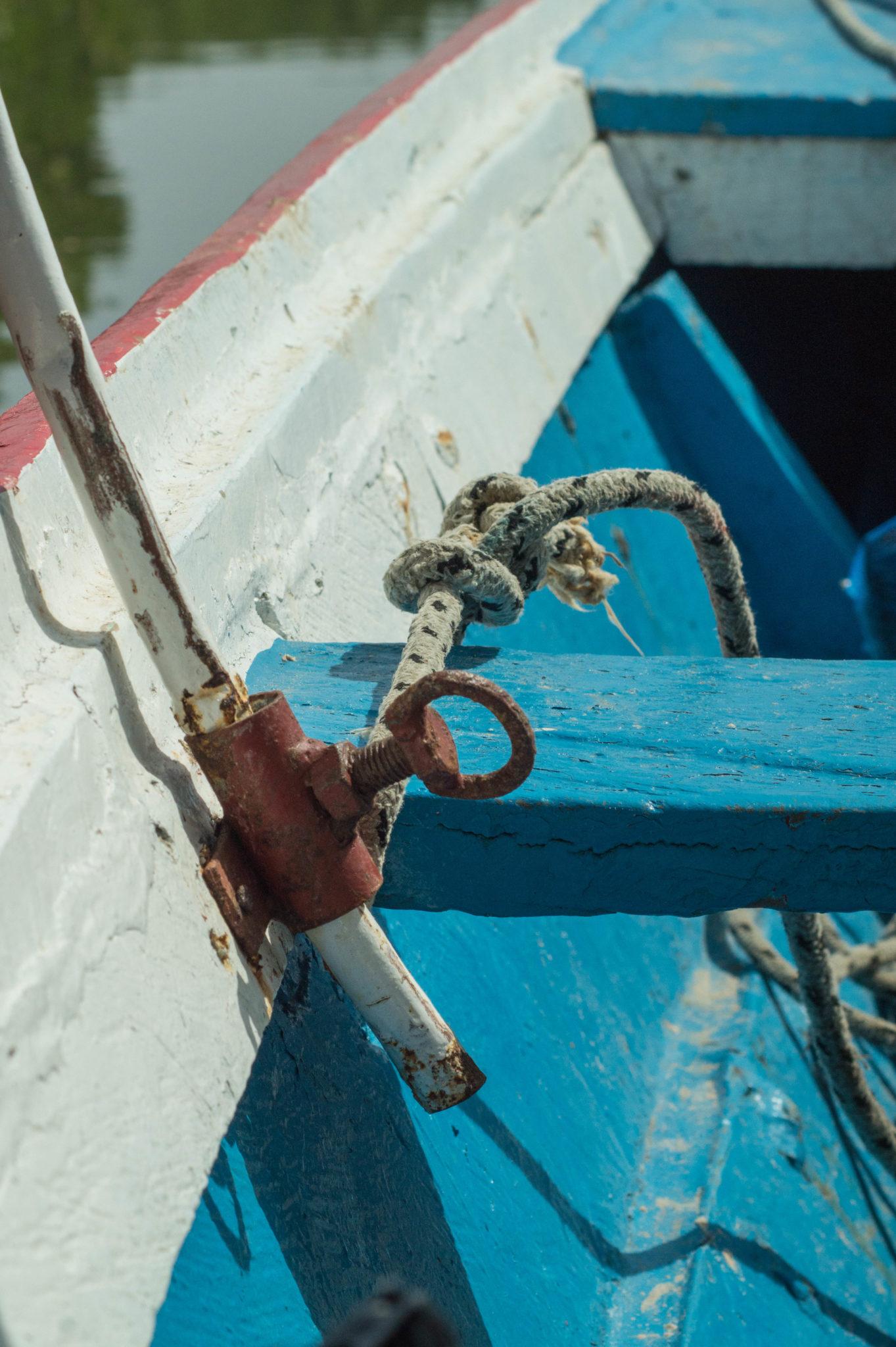 Im senegalesischen Delta fährt man nur mit dem Boot