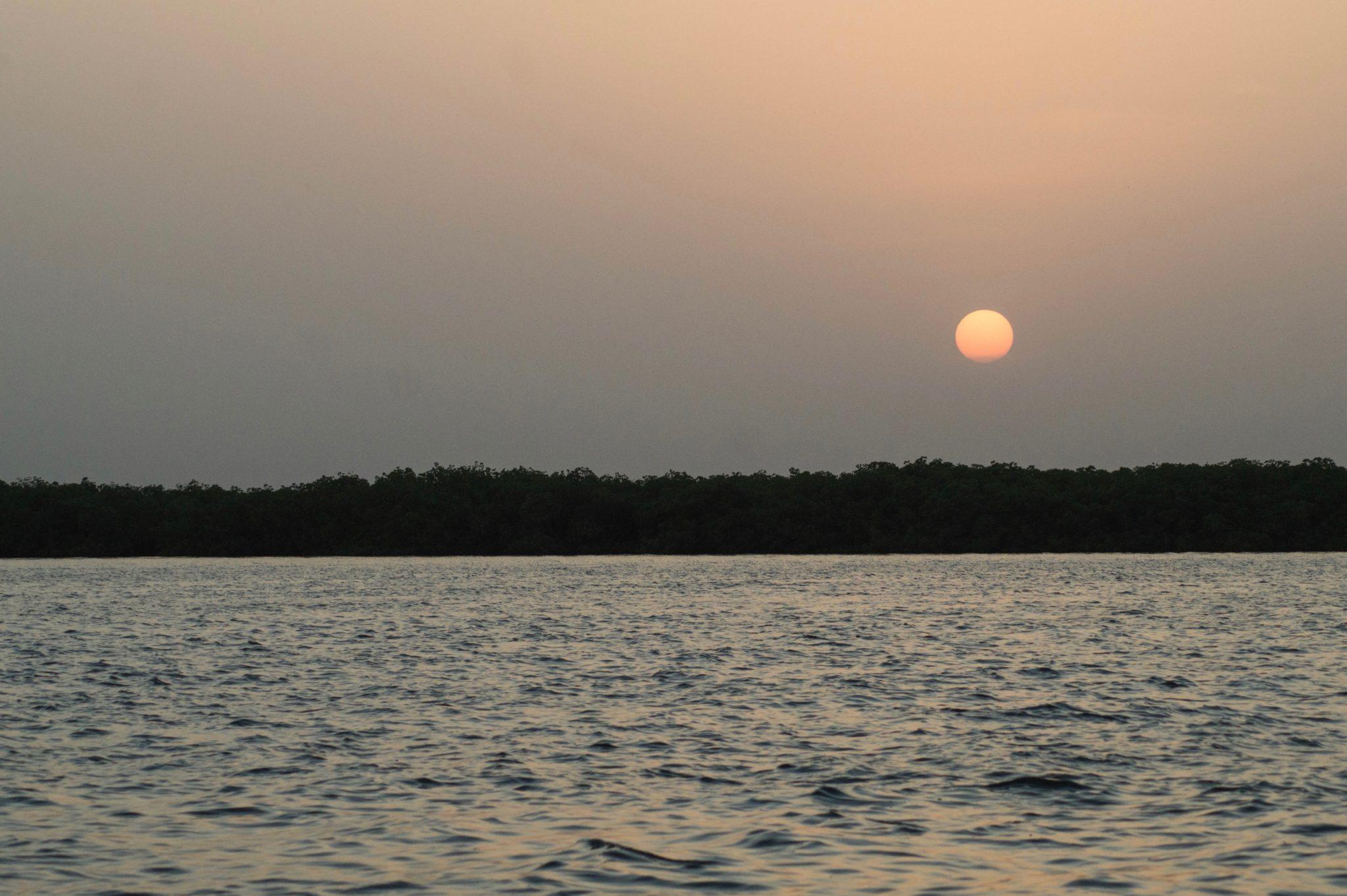 Sonneuntergang im Sine Saloum Senegal: Ein magischer Moment