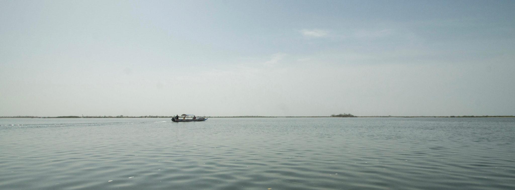 Sine Saloum Senegal: Ruhepol im Chaos