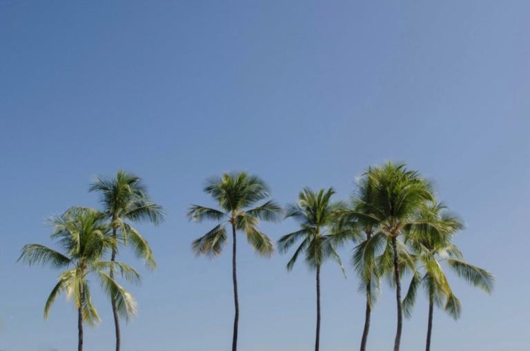 Reiseführer Hawai'i