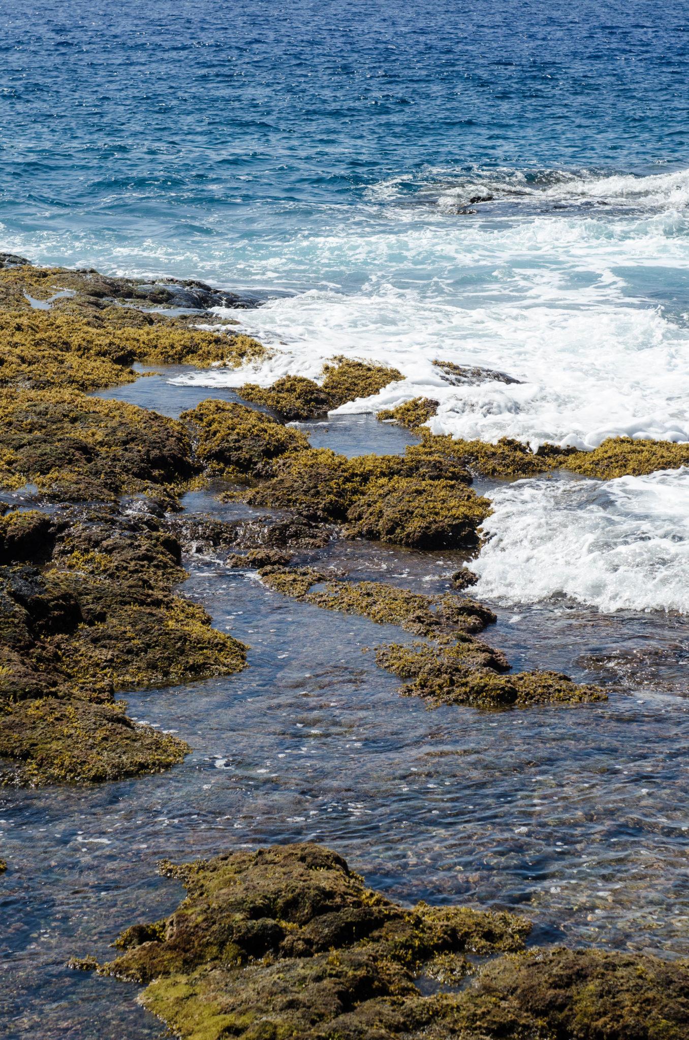Sehenswürdigkeiten Hawaii: Felsen im Meer zeigen, wie vulkanisch hier auf Big Island alles ist.