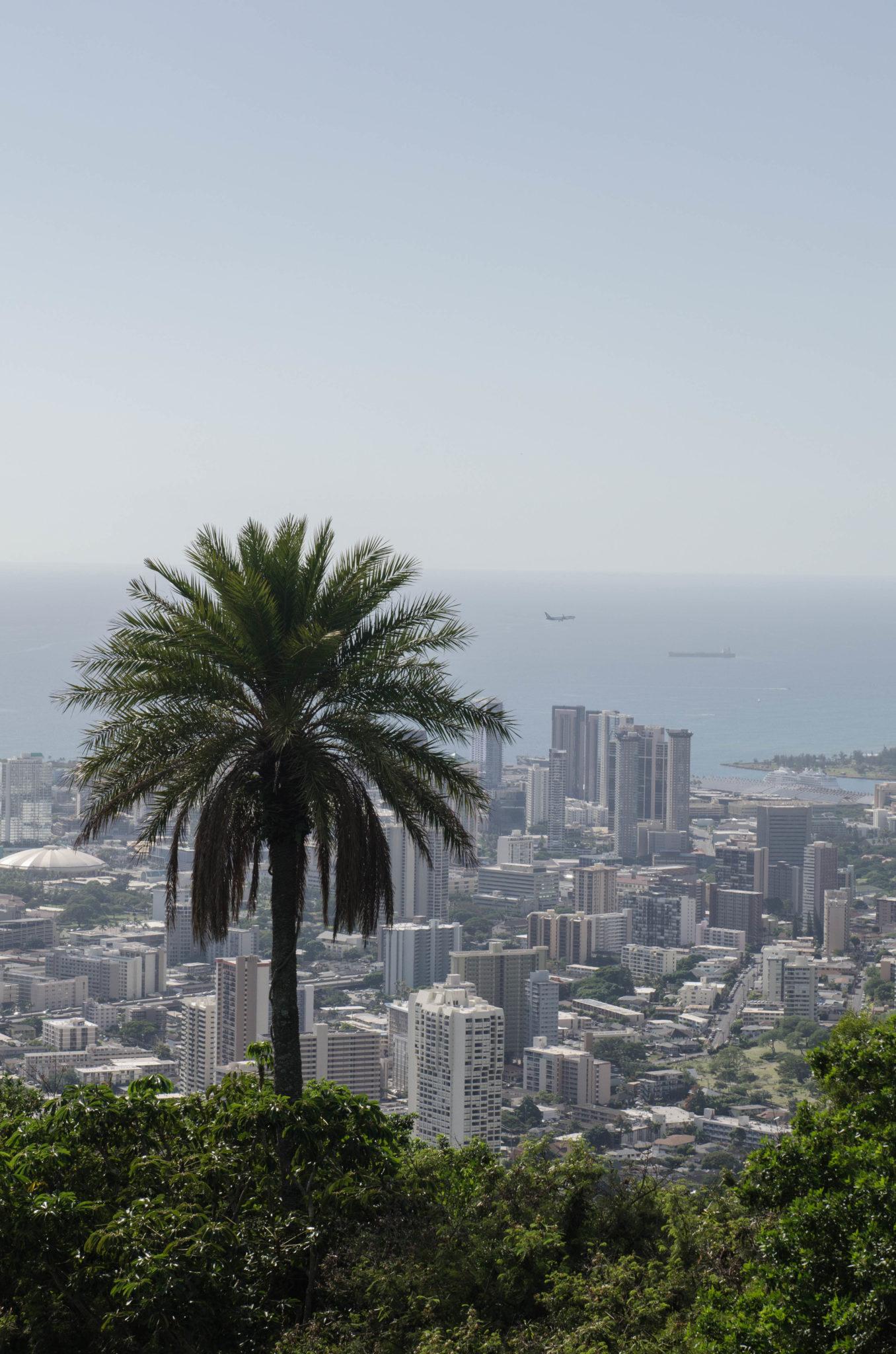 Sehenswürdigkeiten Hawaii: Von hoch oben hat man einen tollen Blick über Oahu
