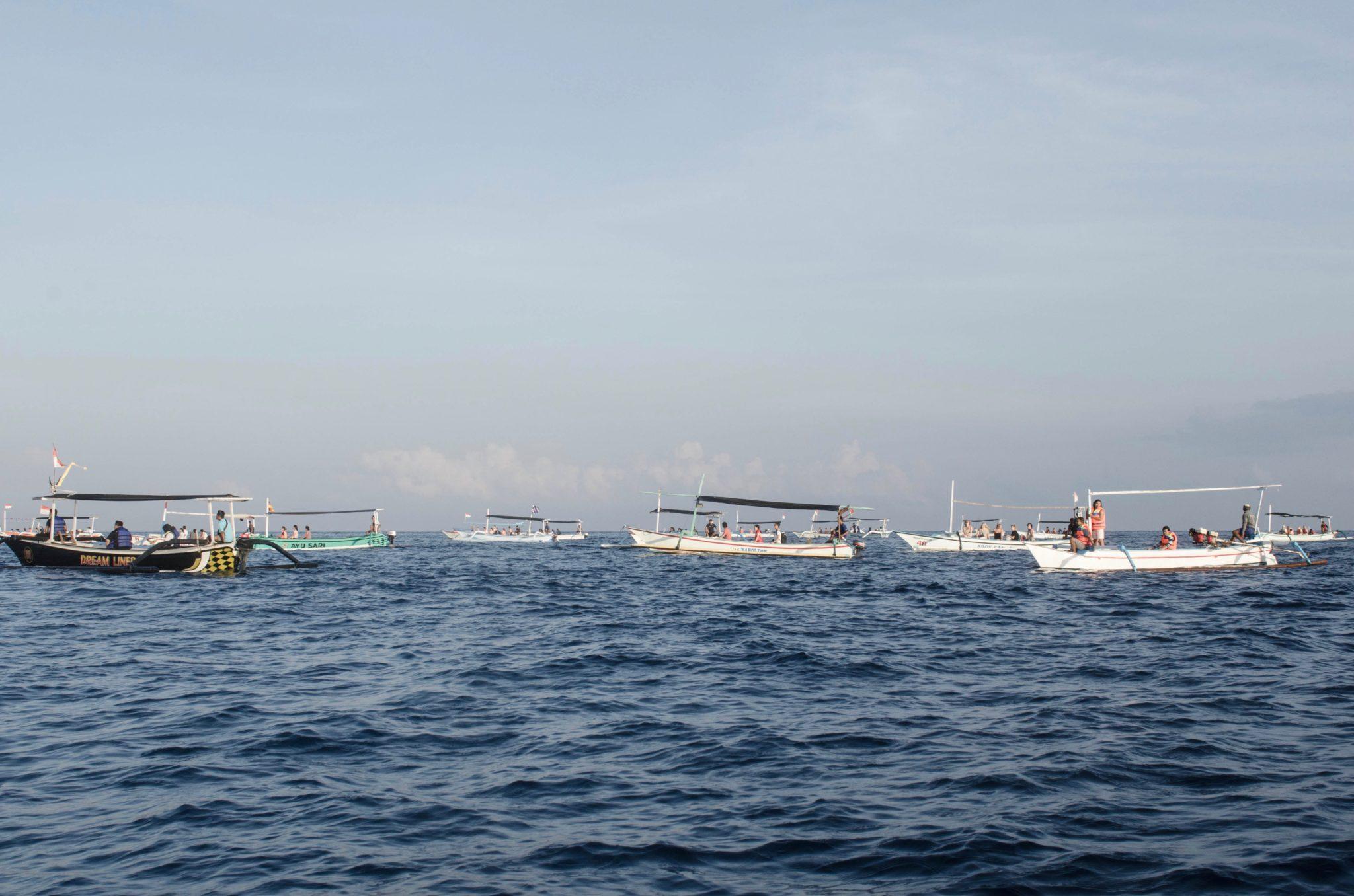 Eine Tour zu den Bali Delfinen in Lovina ist ein fragwürdiger Ausflug.