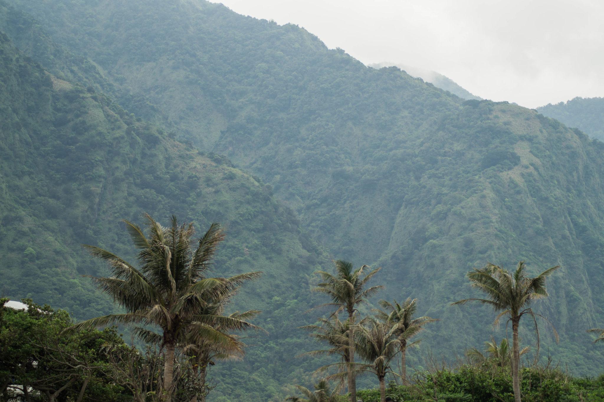 Taiwan Urlaub: Um Taitung herum liegen knallgrüne Berge.