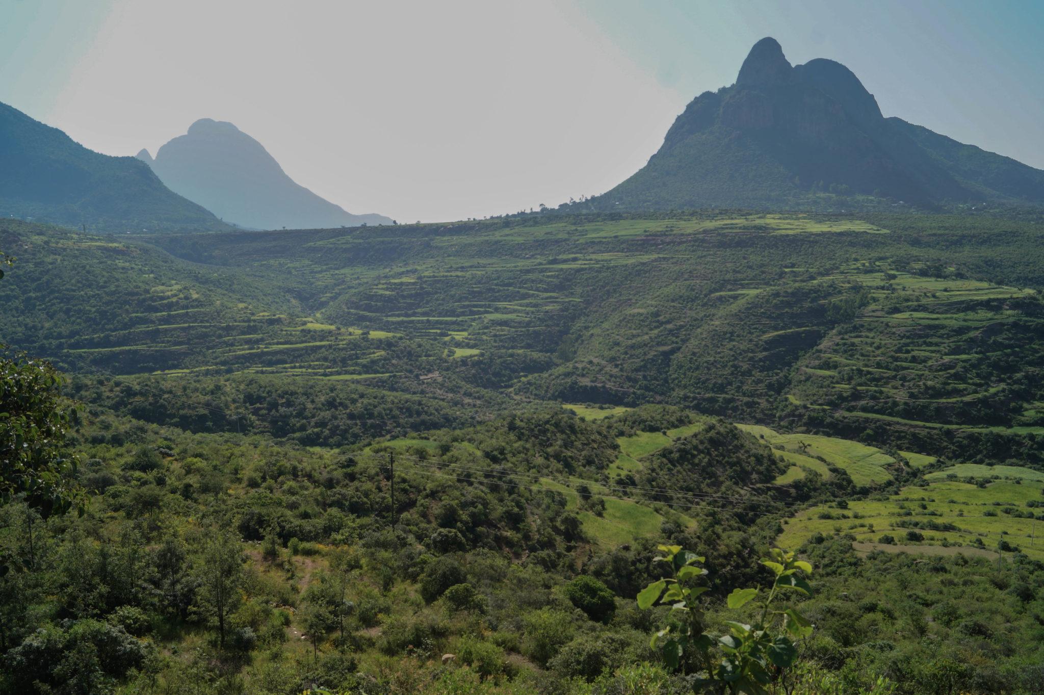Äthiopien Norden: Das Semiengebirge ist riesig groß und wunderbar grün.