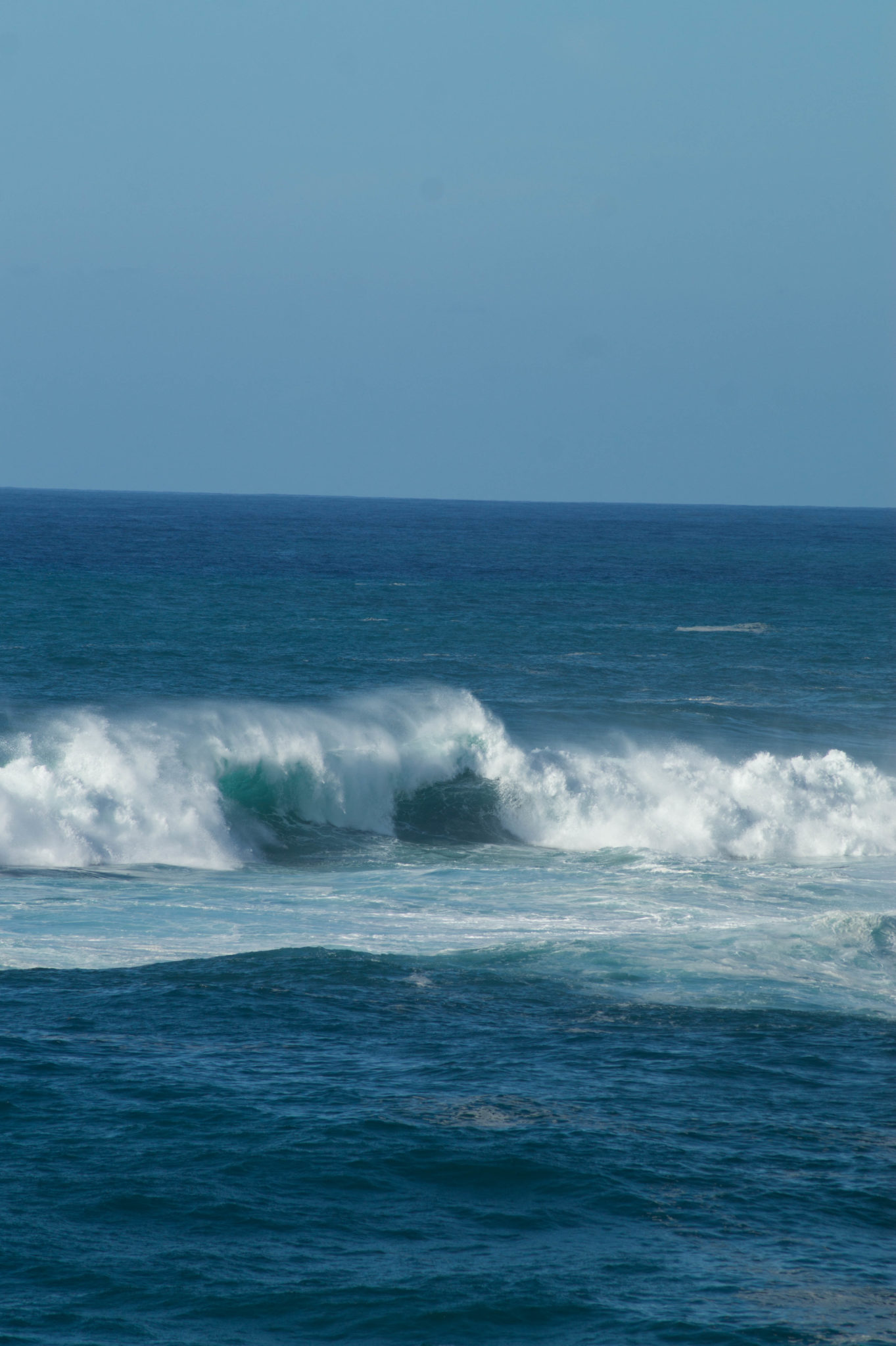 Monsterwellen am Strand von Oahu