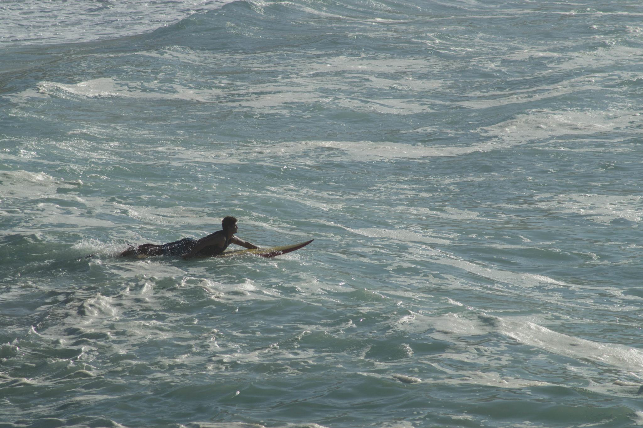 Surfen kann man auf Oahu Hawaii fast überall