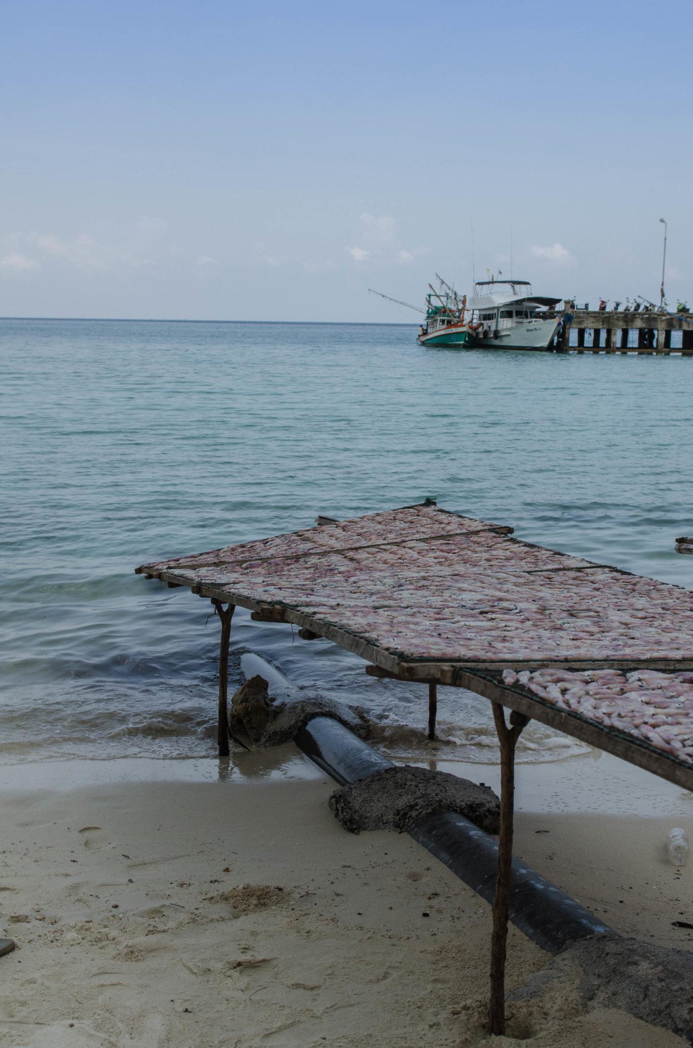 Am Chaloklum Strand wird Fisch getrocknet