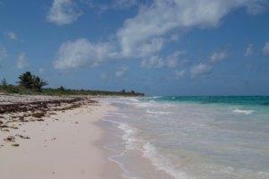 Cat Island: Einfach nichts tun