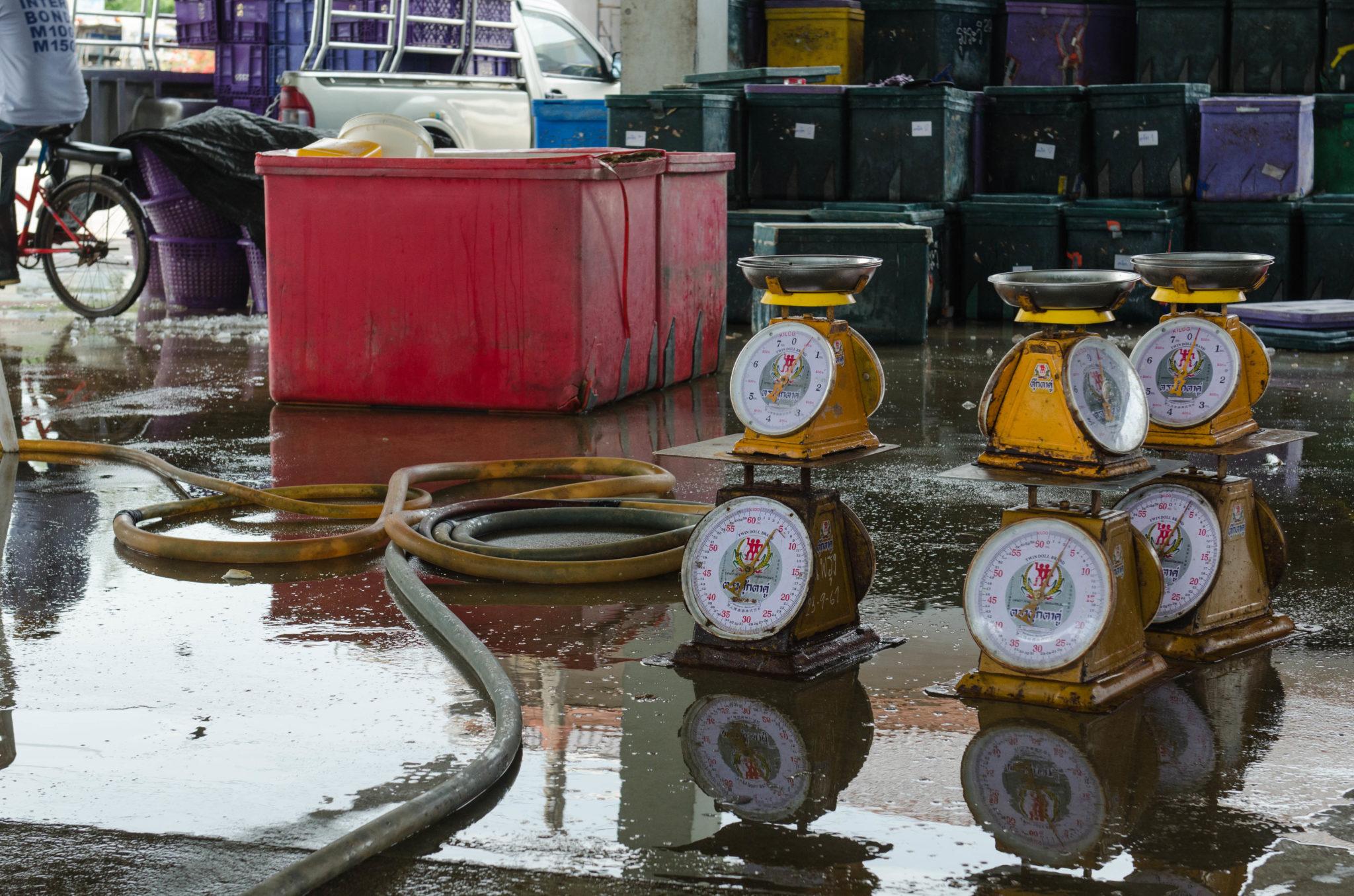 Der Fischmarkt in der Region Chumphon