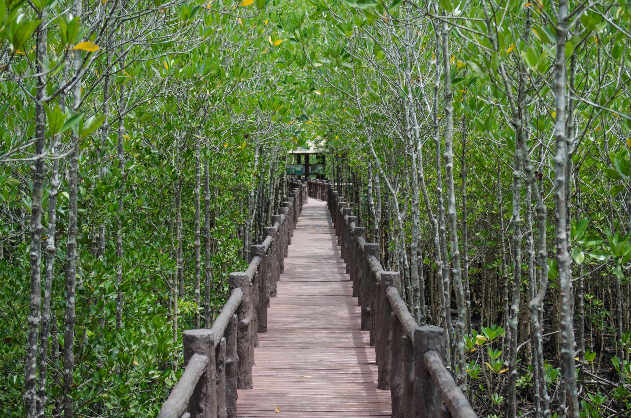 Der Mu Koh Chumphon National Park in der thailändischen Region Chumphon