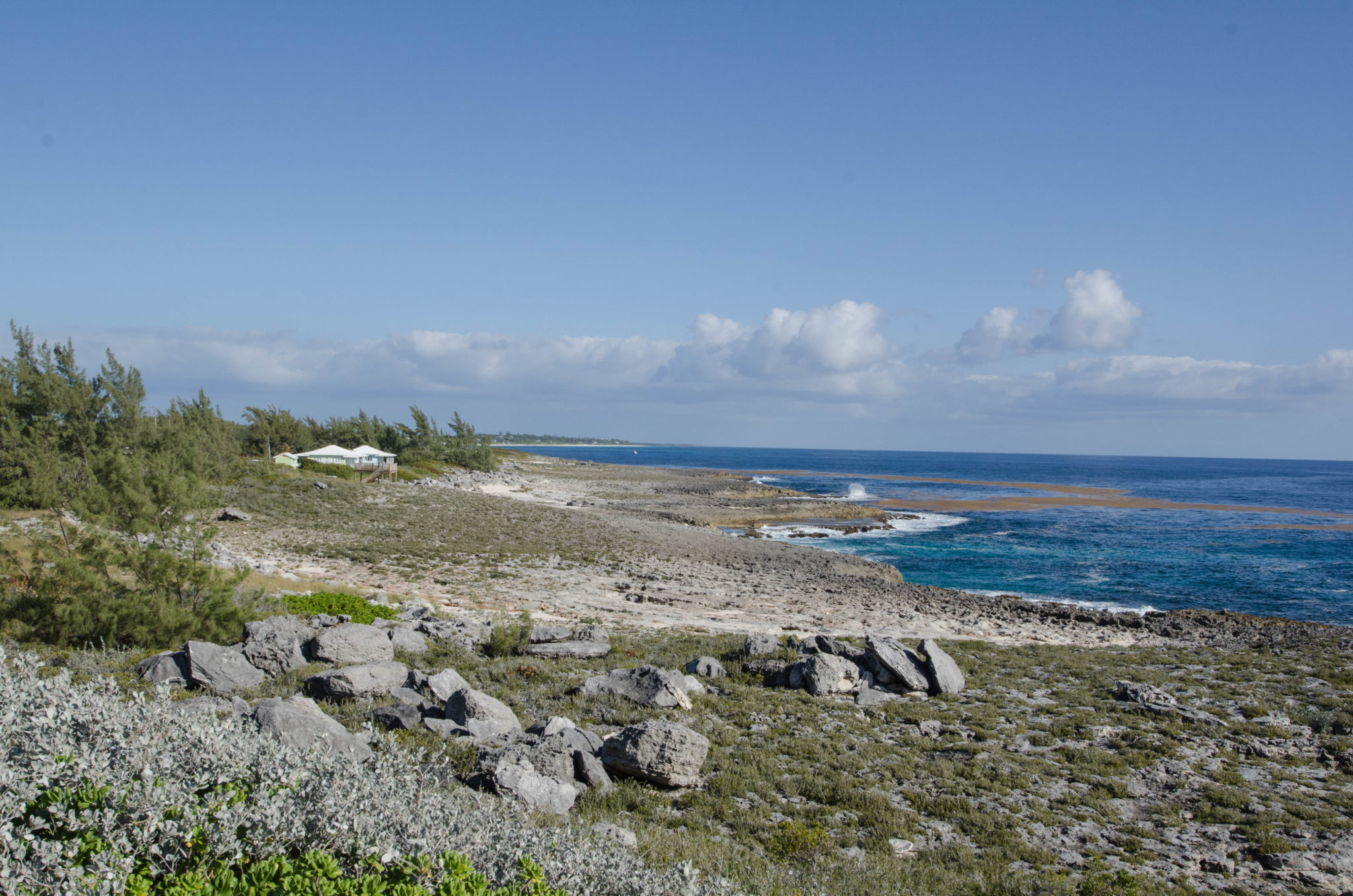 Hinter dem Ocean Tally Hotel findet man versteckte Buchten mit Schildkröten