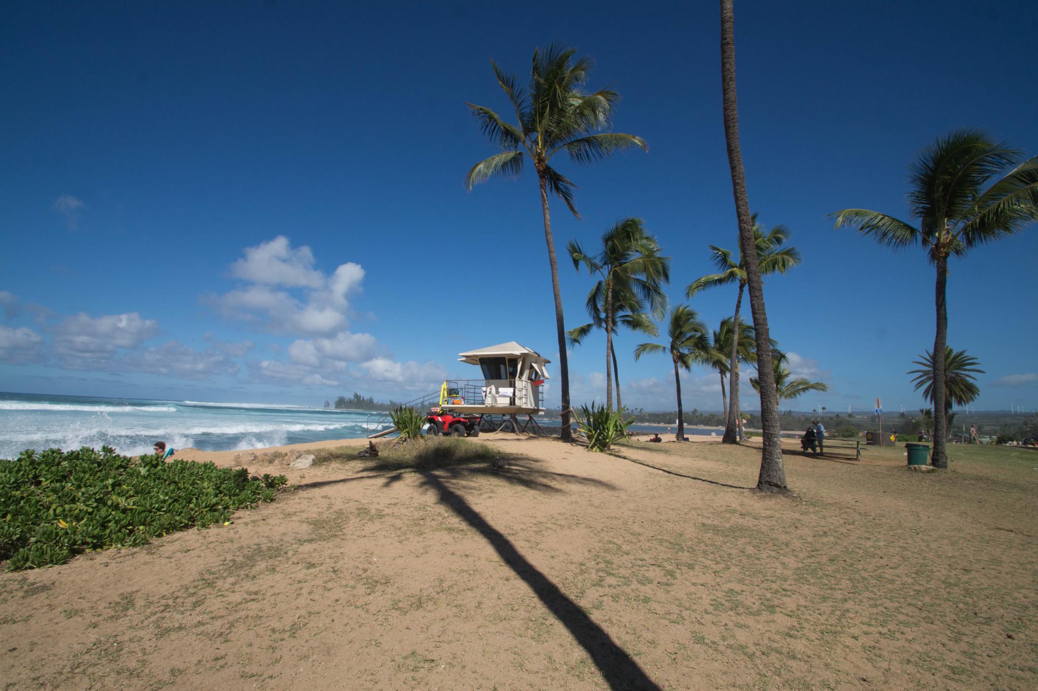 Hawaii Reisen planen und dabei nicht den Trip an die North Shore von Oahu vergessen
