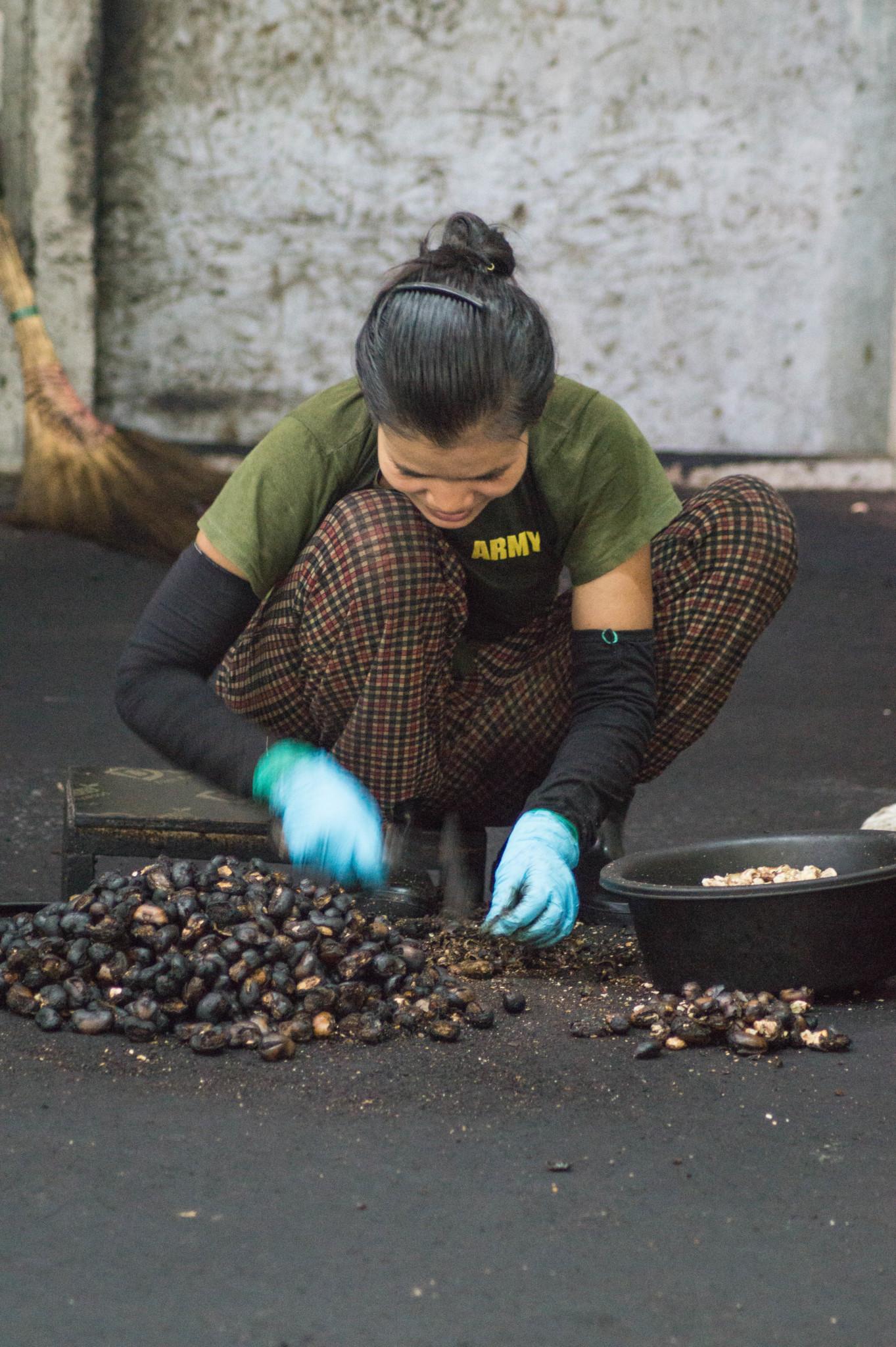 Cashewnüsse werden in Ranong geröstet