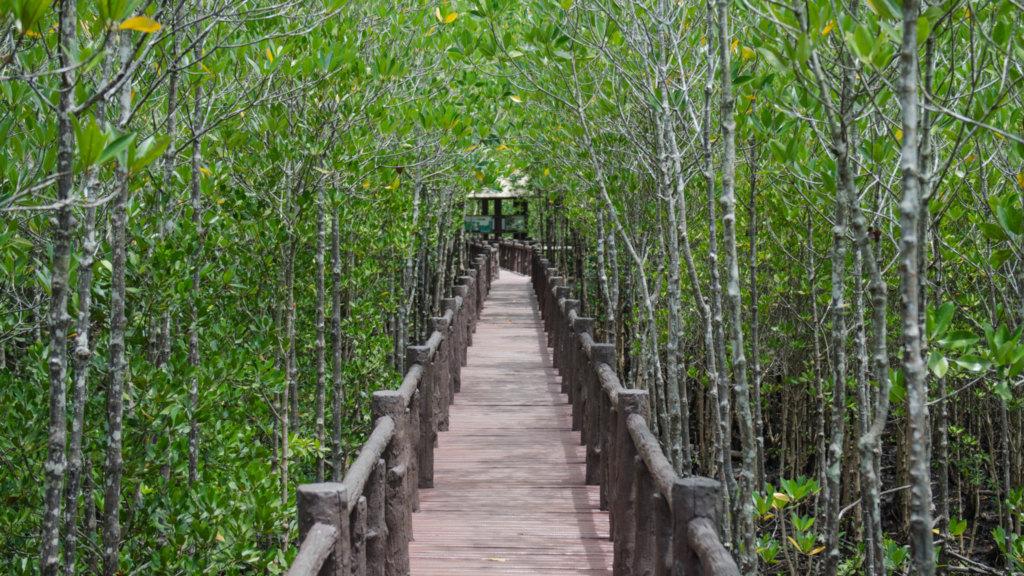 Holzbrücke in Chumphon