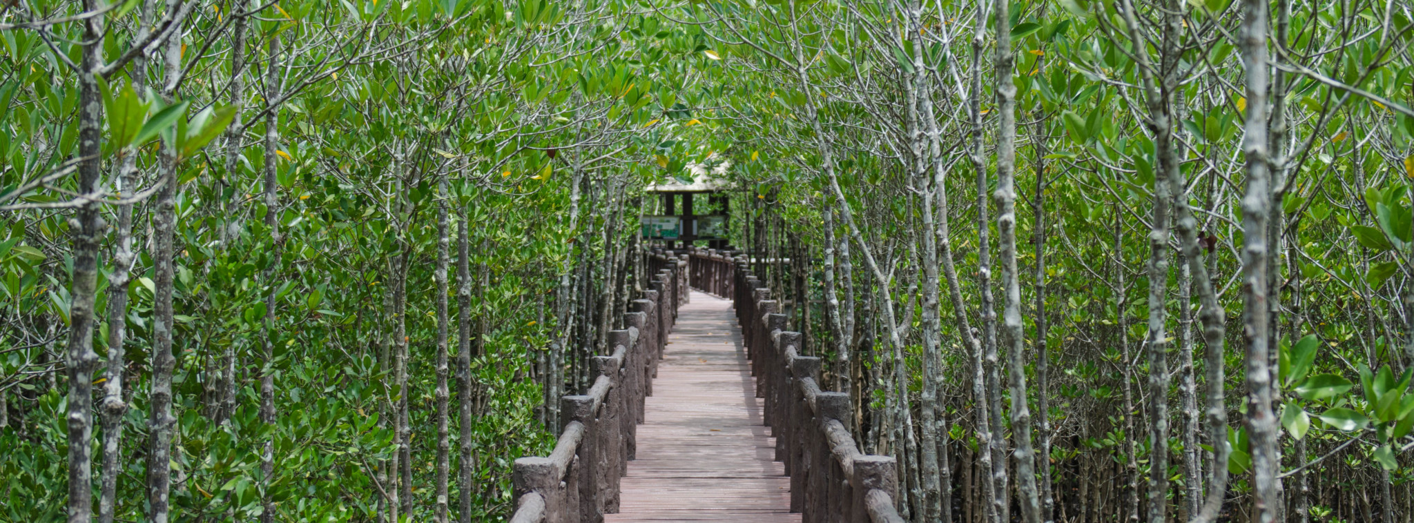 Chumphon Sehenswürdigkeiten Holzbrücke
