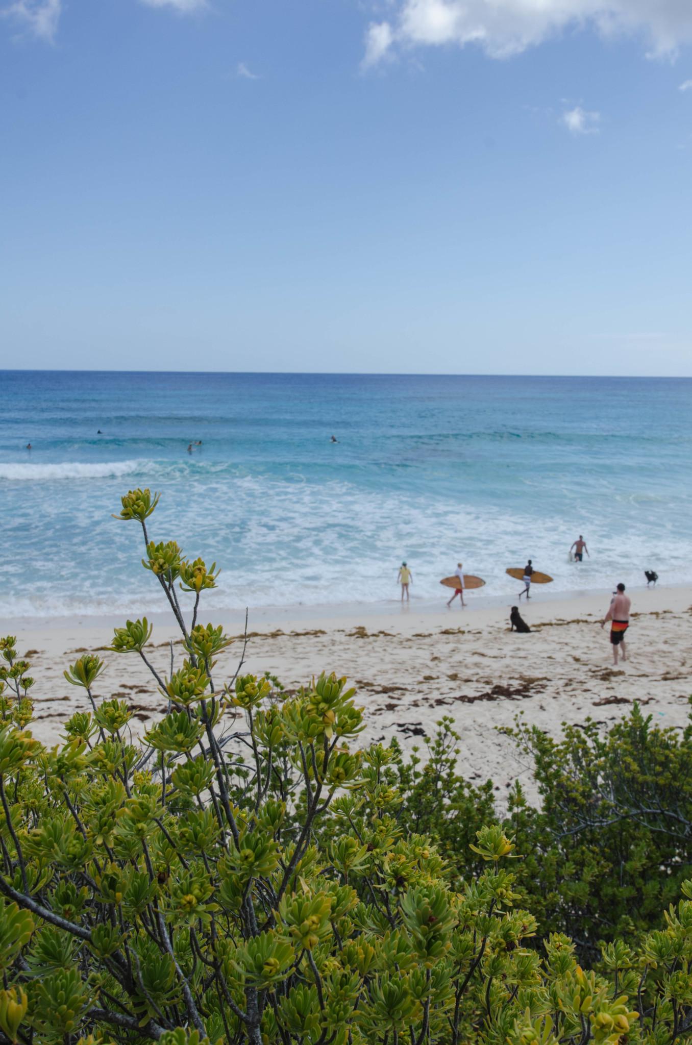 Surfer am Surfer's Beach auf Eleuthera
