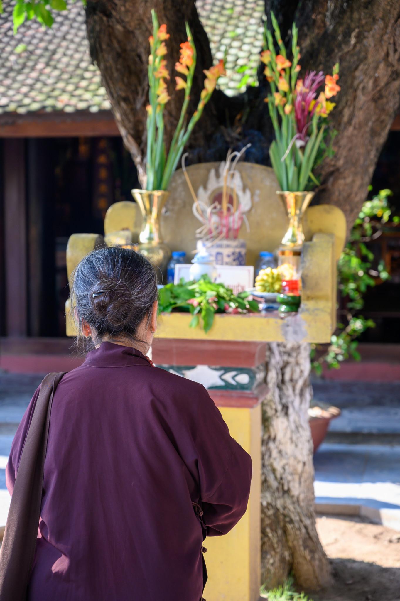 Eine Frau betet in der Tran Quoc-Pagode in Hanoi