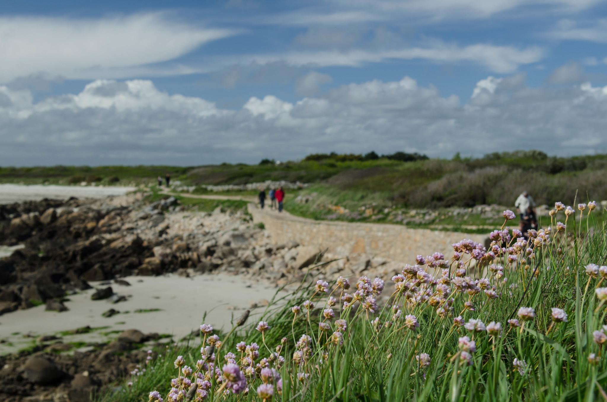 Ein echtes Stück Frankreich: Salut aus der Bretagne!