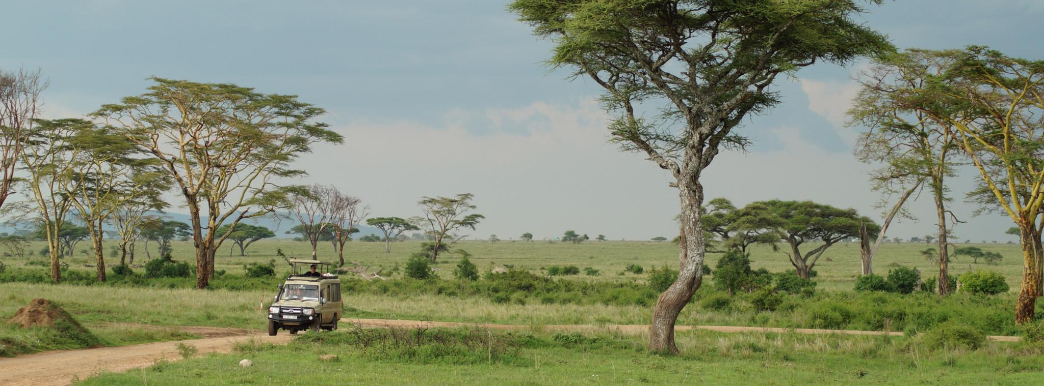 Tipps und Tricks zum Thema Afrika Reisen
