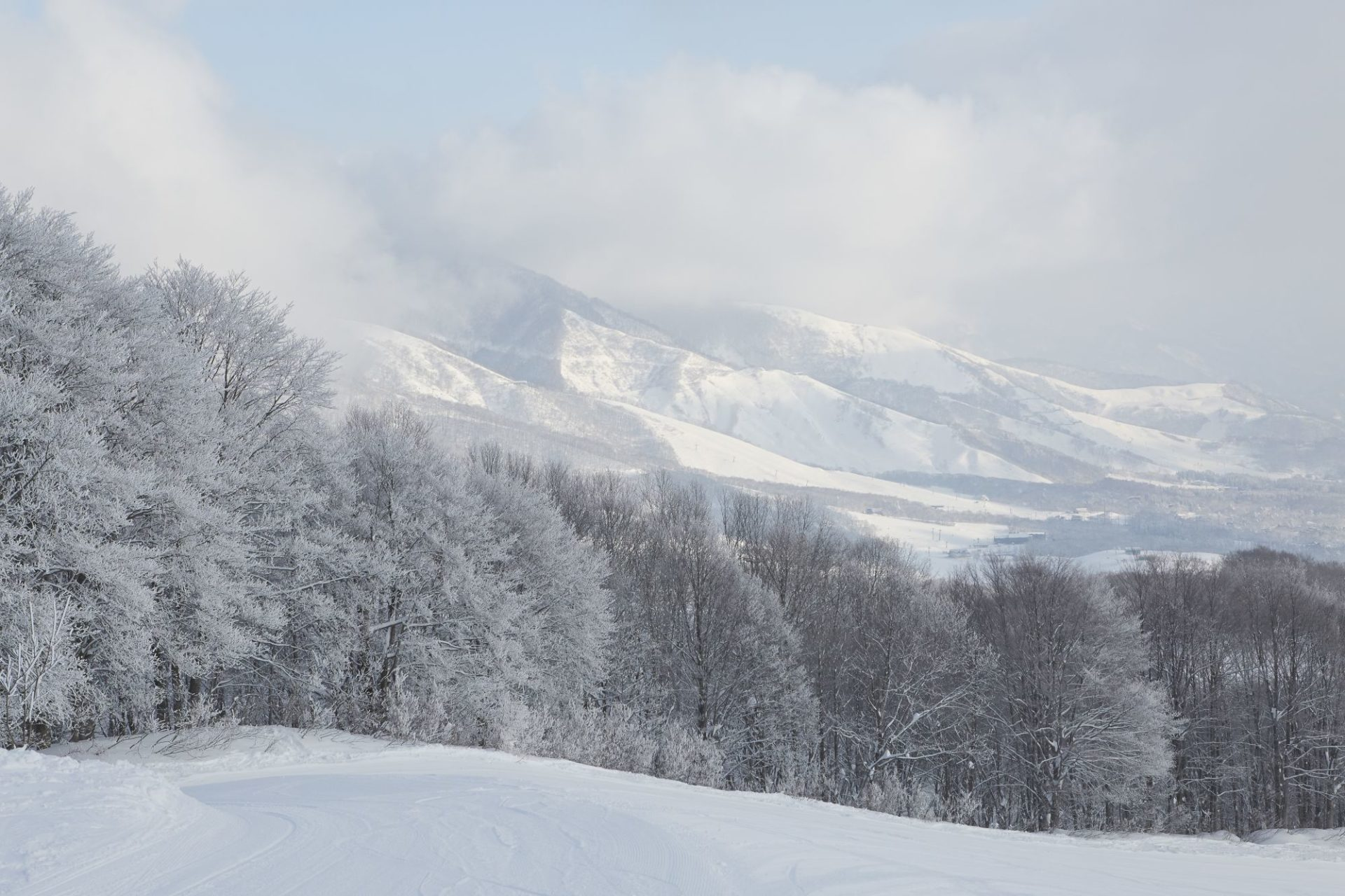 Winterlandschaft in Nagano in Japan