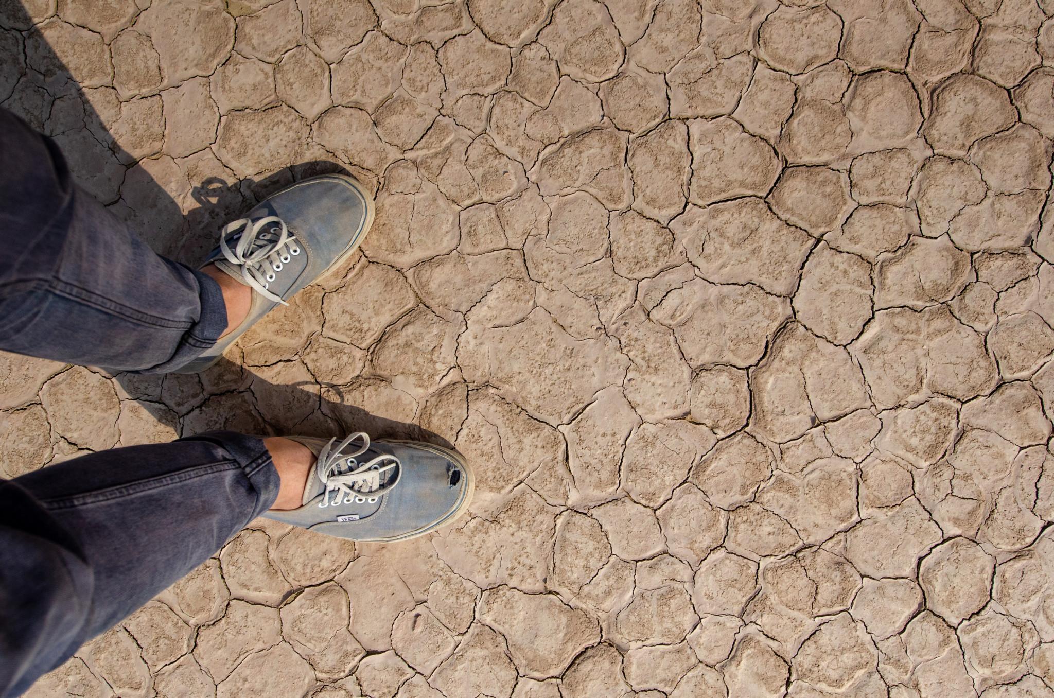 Must-See auf der Pakistan Rundreise ist die Cholistan Wüste in der Nähe von Bahawalpur
