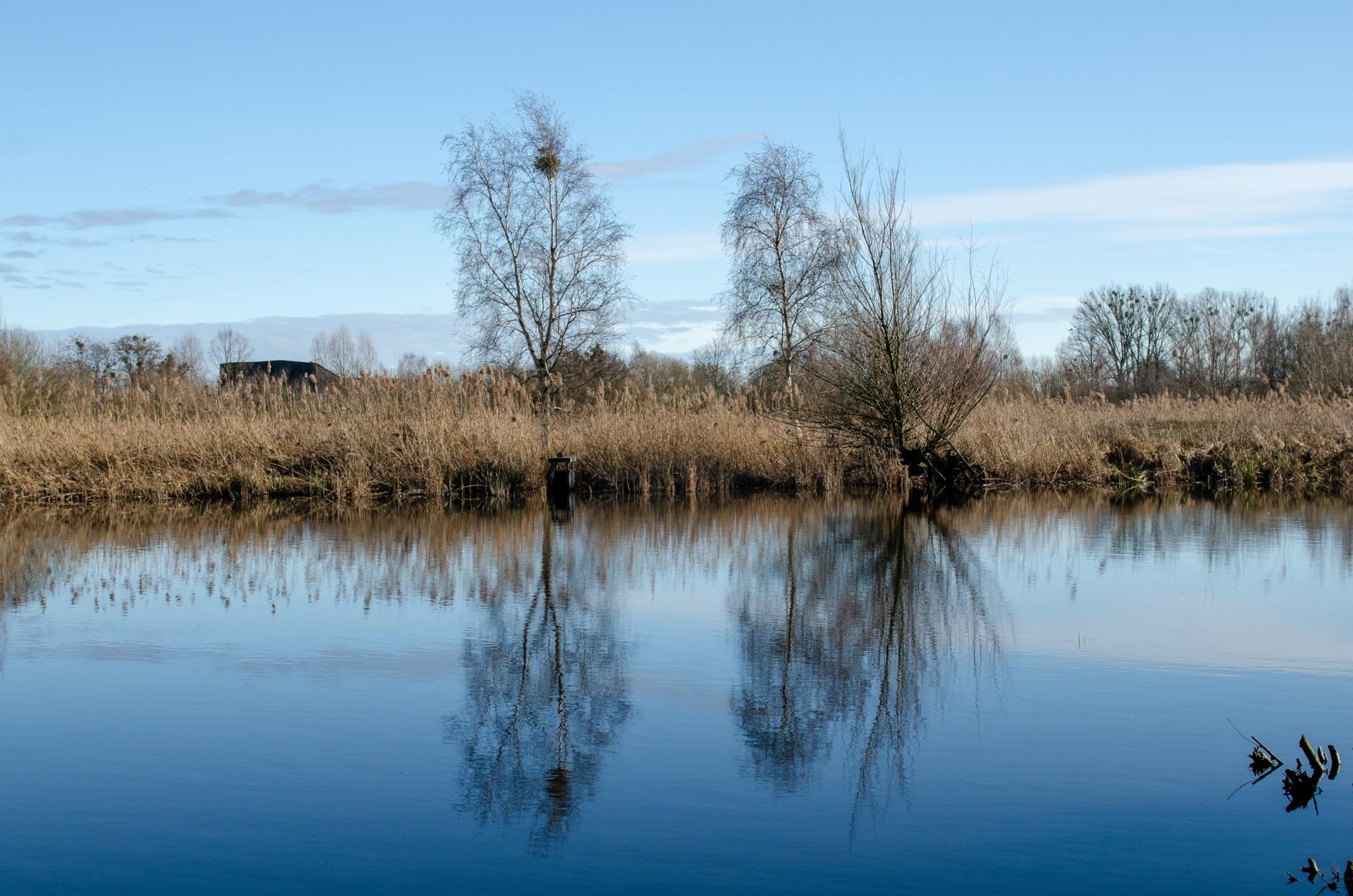 Landschaft im Unteren Odertal