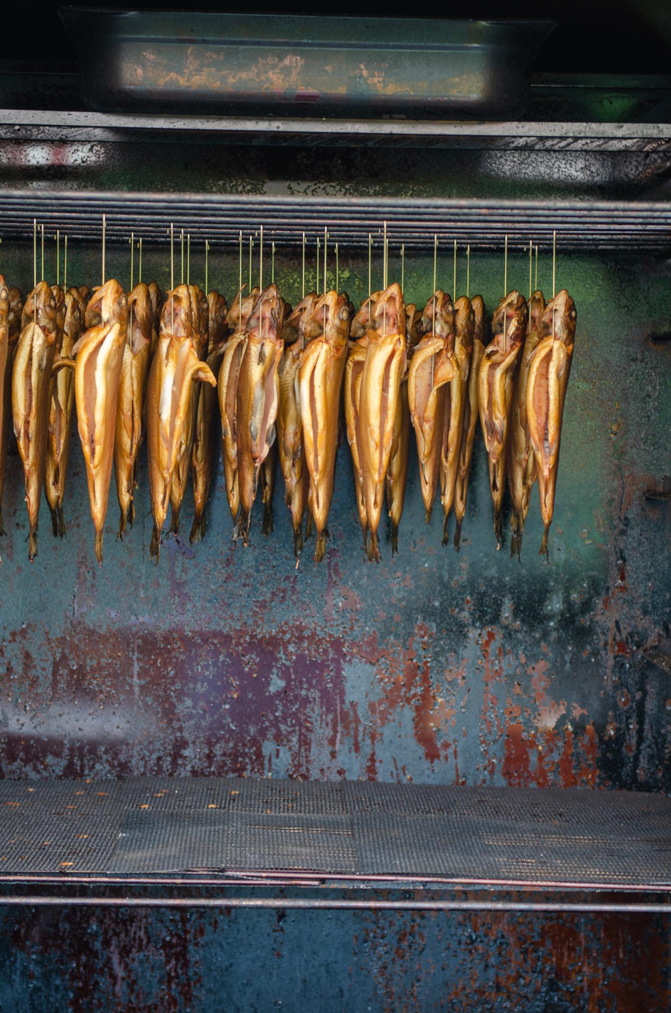 Fisch bei Glut und Späne