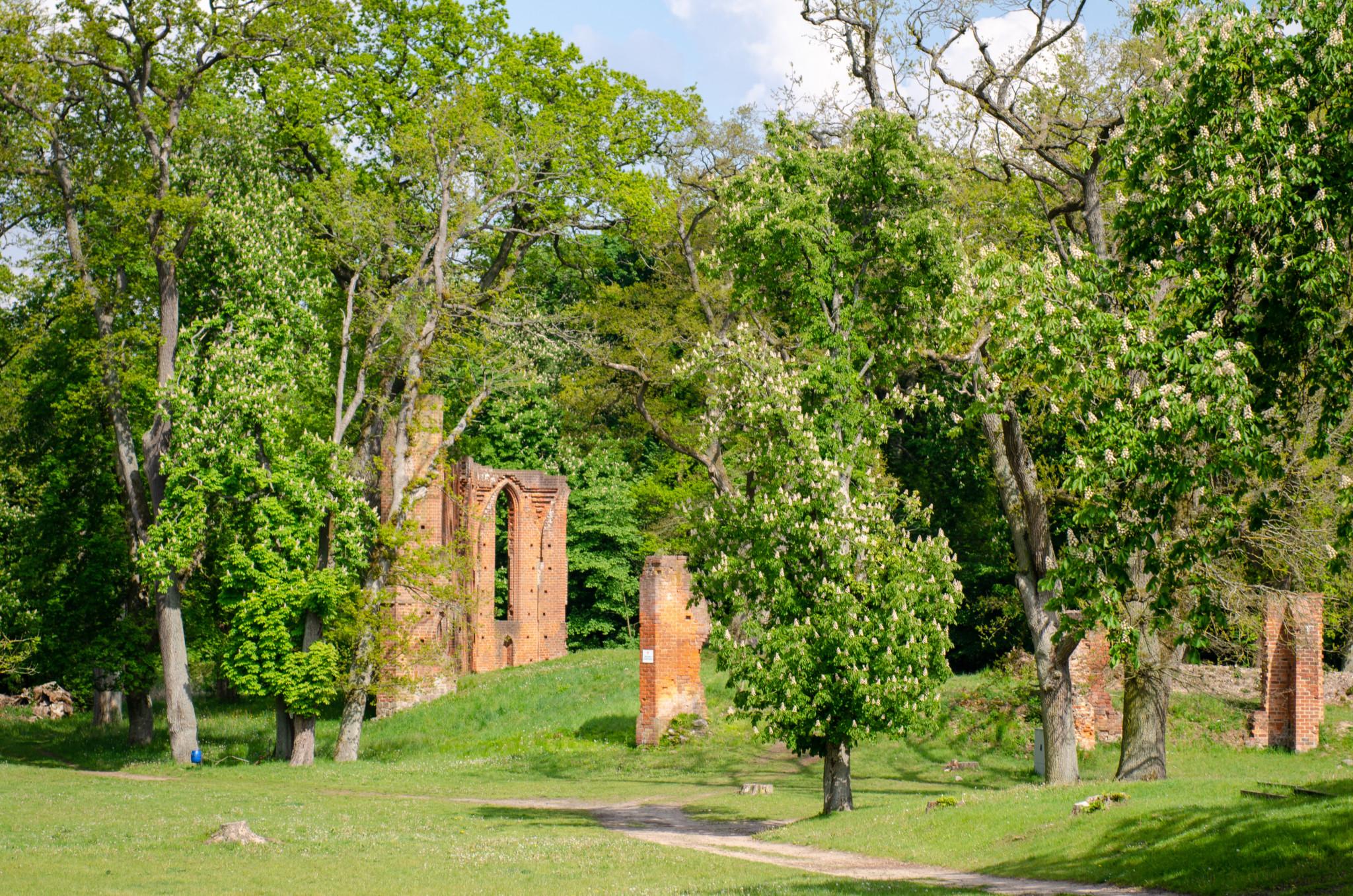 Die Klosterruine im Boitzenburger Land gehört zum Uckermark Urlaub dazu