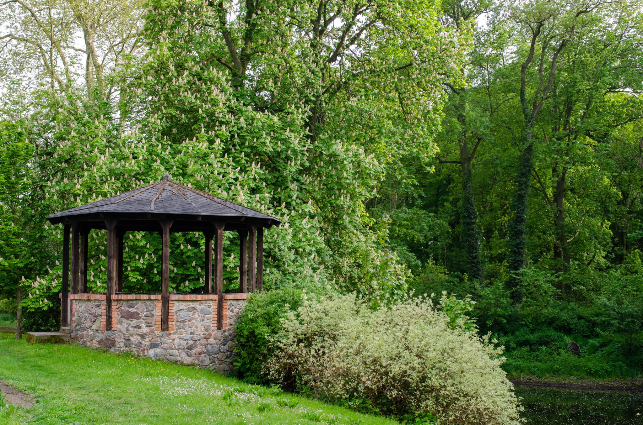 Der Lenné Park hinter der Schlossruine Hohenlandin