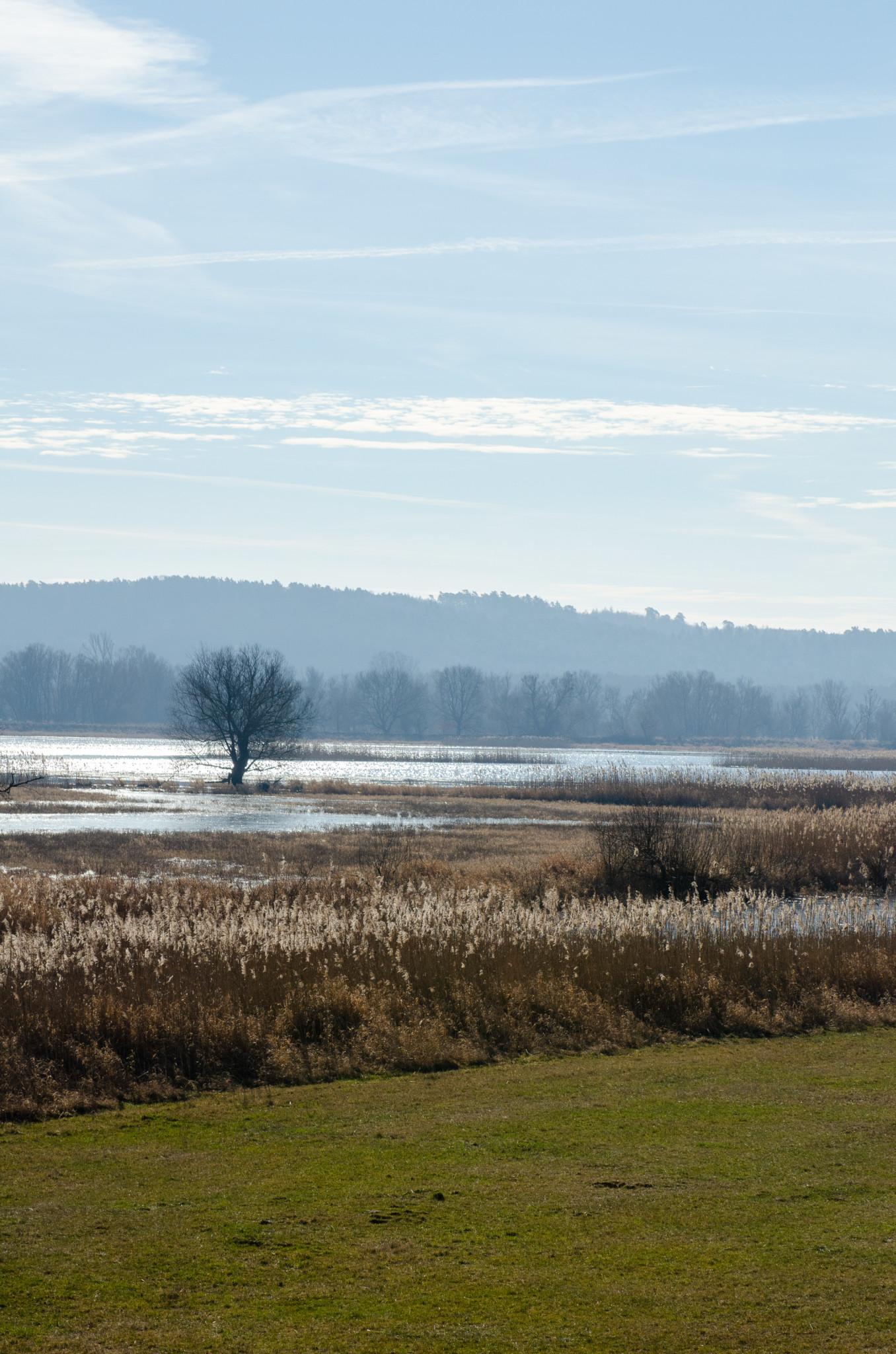 Weite Polderlandschaft im Naturpark Unteres Odertal