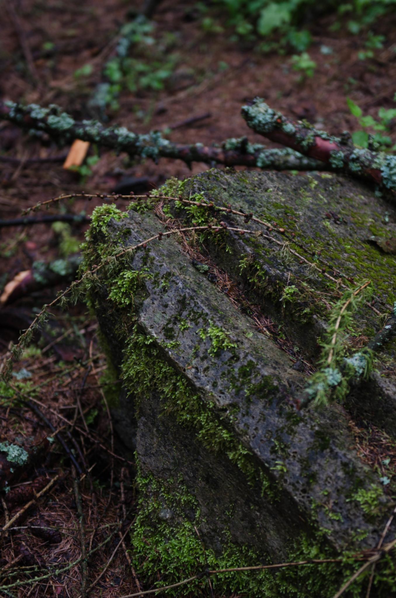 Carinhall gilt als verstecktes Highlight in Brandenburg