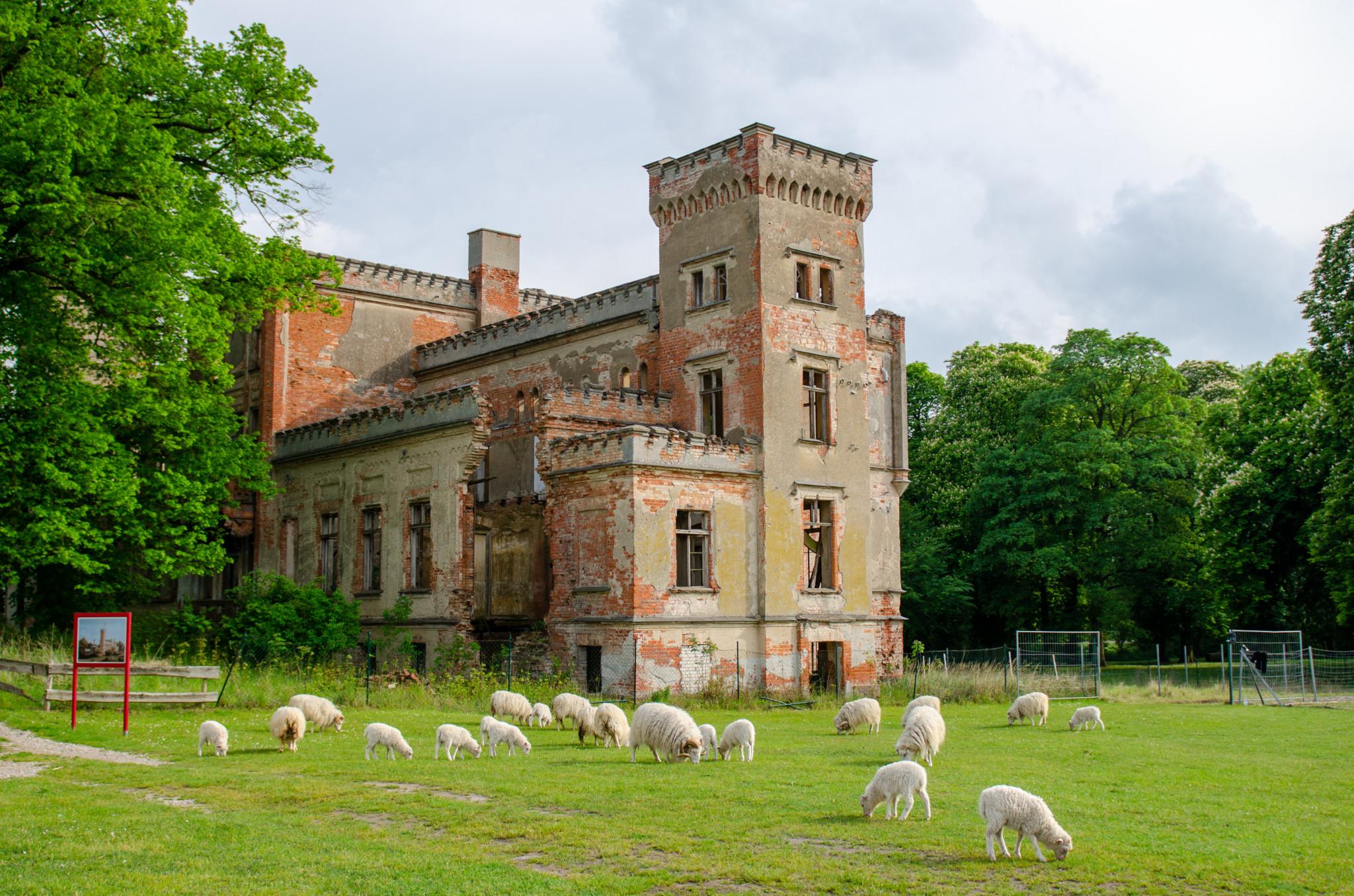 Die Schlossruine Hohenlandin ist ein Highlight in Brandenburg