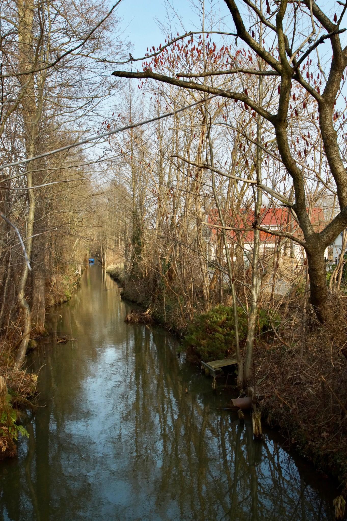 Die typische Landschaft im Spreewald bei Berlin