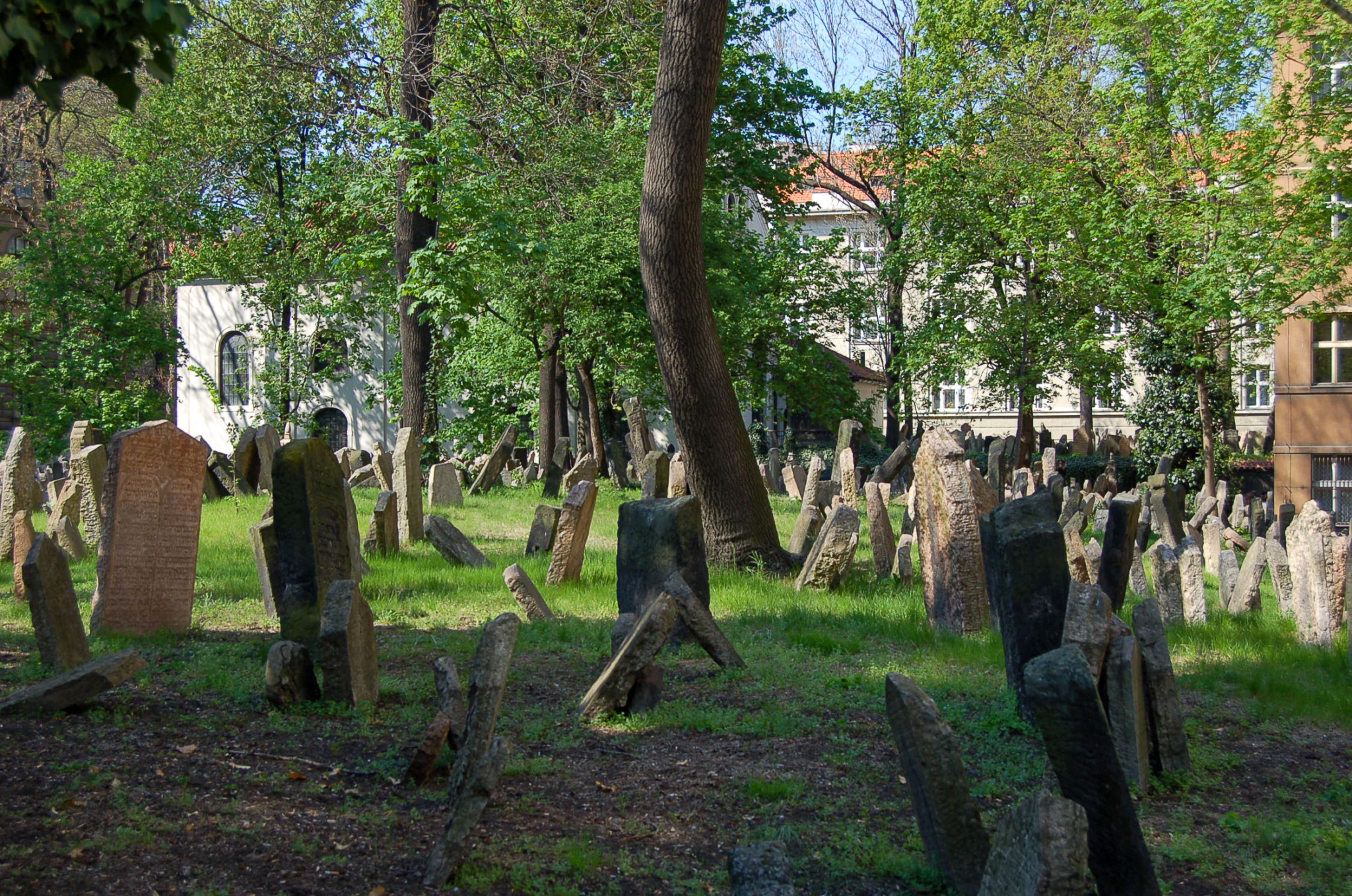 Alter jüdischer Friedhof in Prag